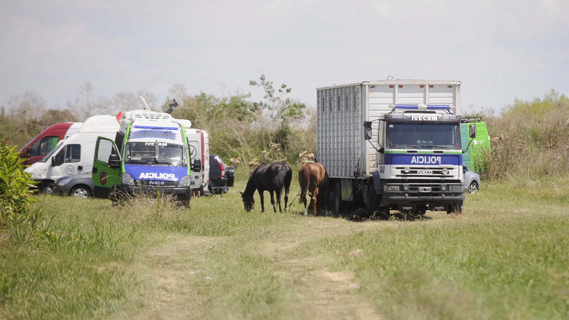Durante el martes se rastrilló el arroyo Rodríguez y sus inmediaciones