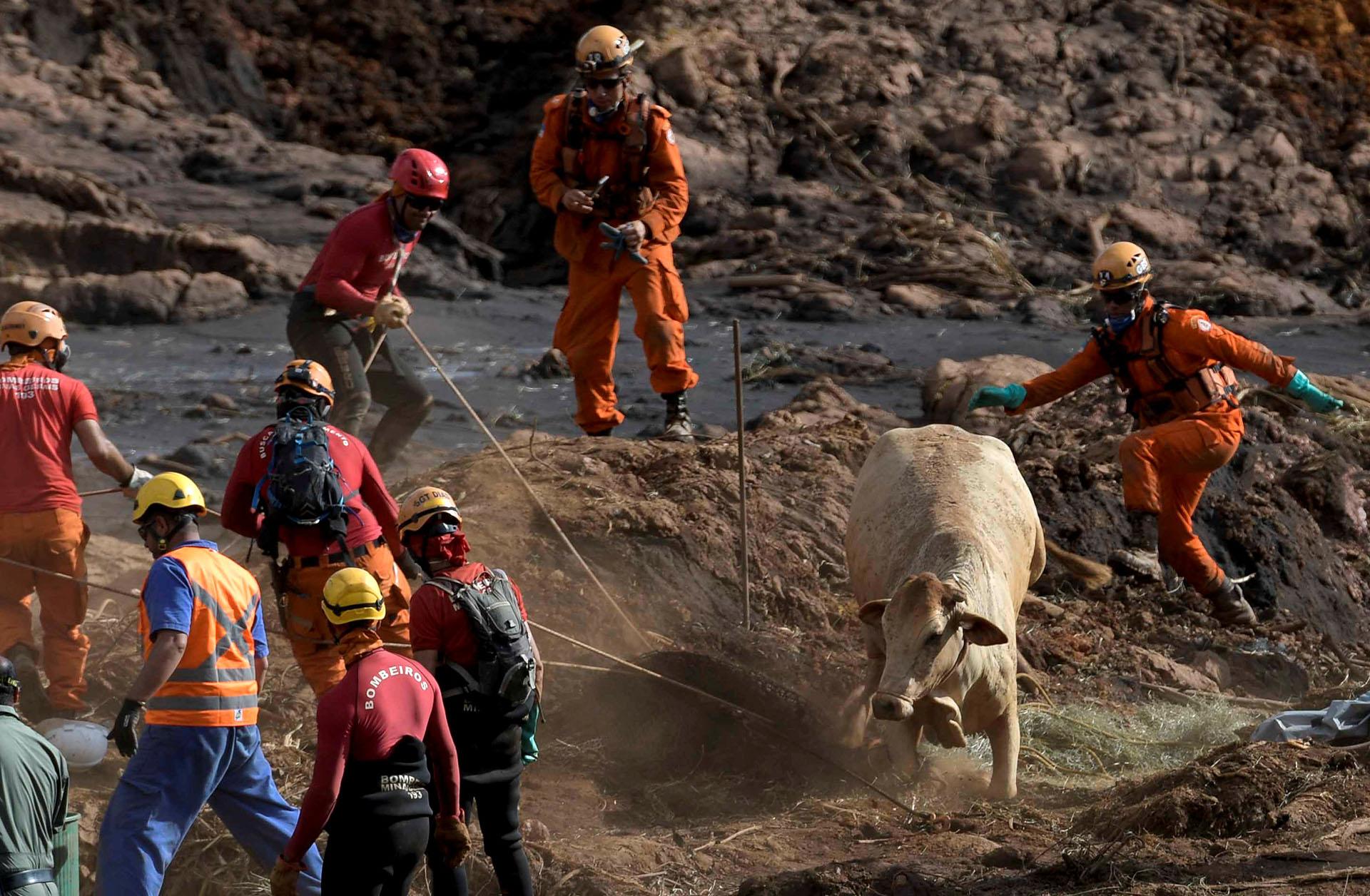 Las autoridades advirtieron sobre posibles nuevas roturas de represas mineras (Reuters)