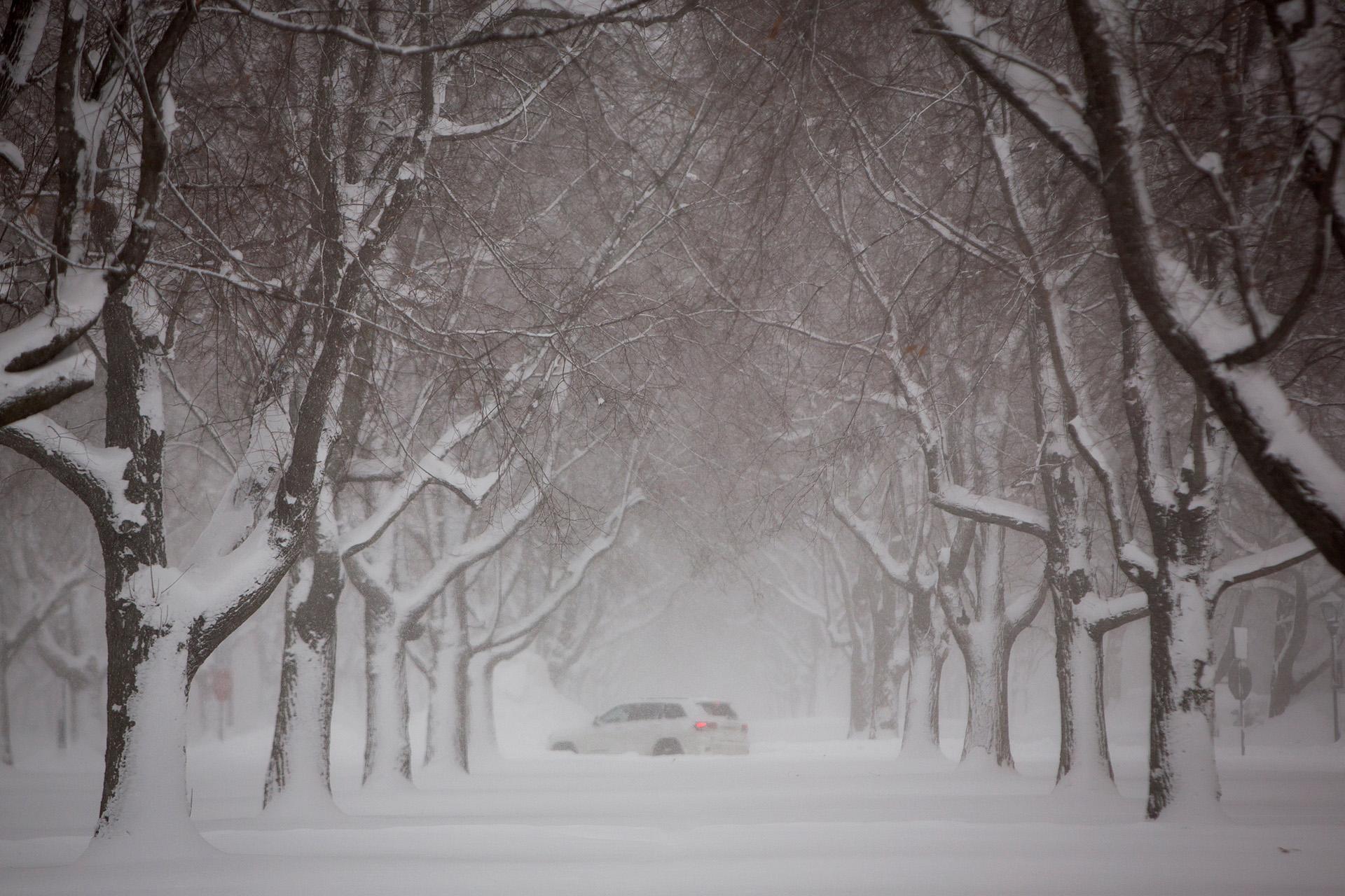 Un vehículo avanza por el Lincoln Parway en Buffalo, en medio de la tormenta de nieve.