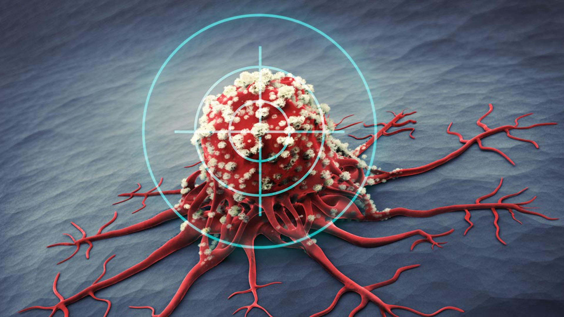 """Favre estudia desde 2009 """"a nivel molecular de qué manera las células normales y tumorales del hígado toman distintos caminos cuando son sometidas a estrés energético"""""""