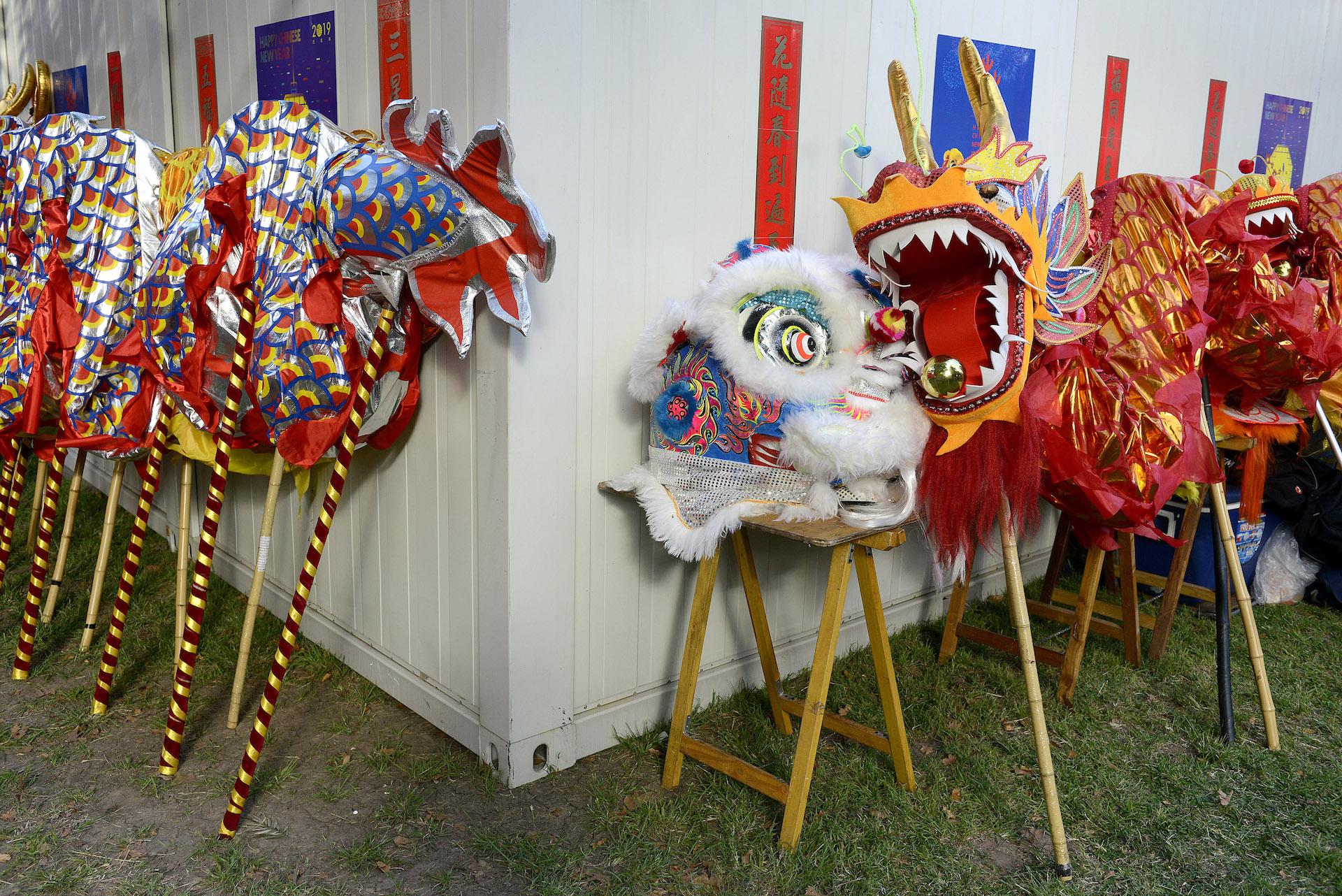 Dragones y leones a la espera de quienes los levantarán con los bastones de madera. En minutos, el Dragón serpenteará entre la multitud.
