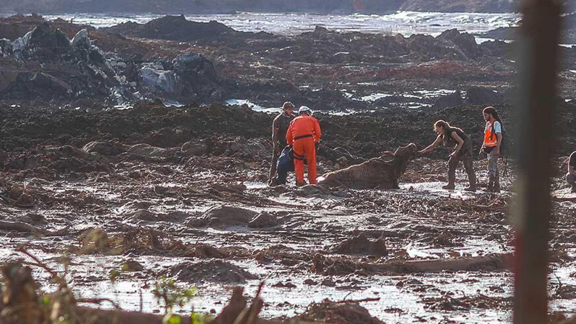La tarea de los rescatistas, la desesperada búsqueda por sobrevivientes en el lodo y entre los escombros. Foto: Archivo DEF.
