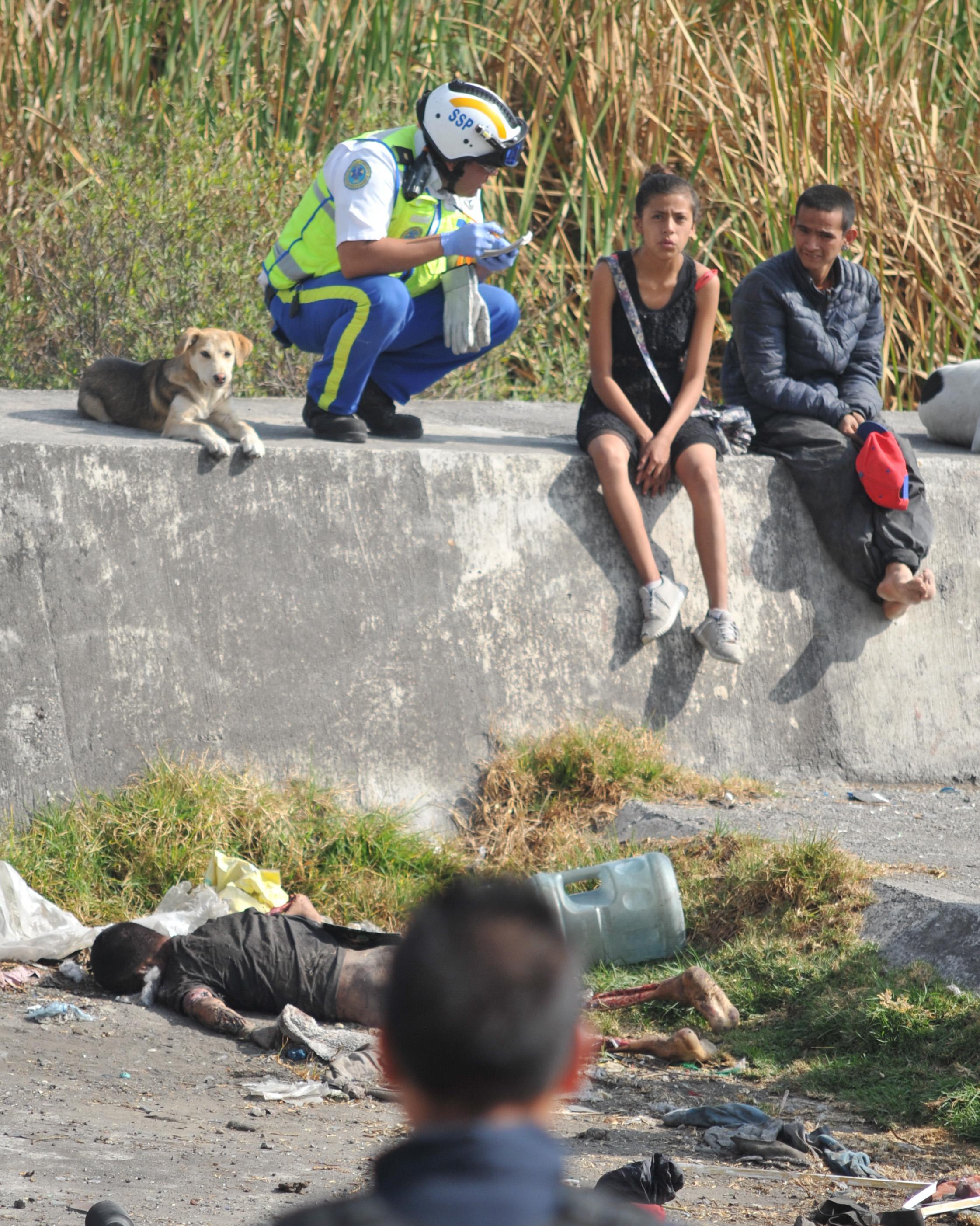 Hay entre 25 a 30 perros que luego atacan a los vecinos, niños y personas sin hogar (FOTO: ARMANDO MONROY /CUARTOSCURO)