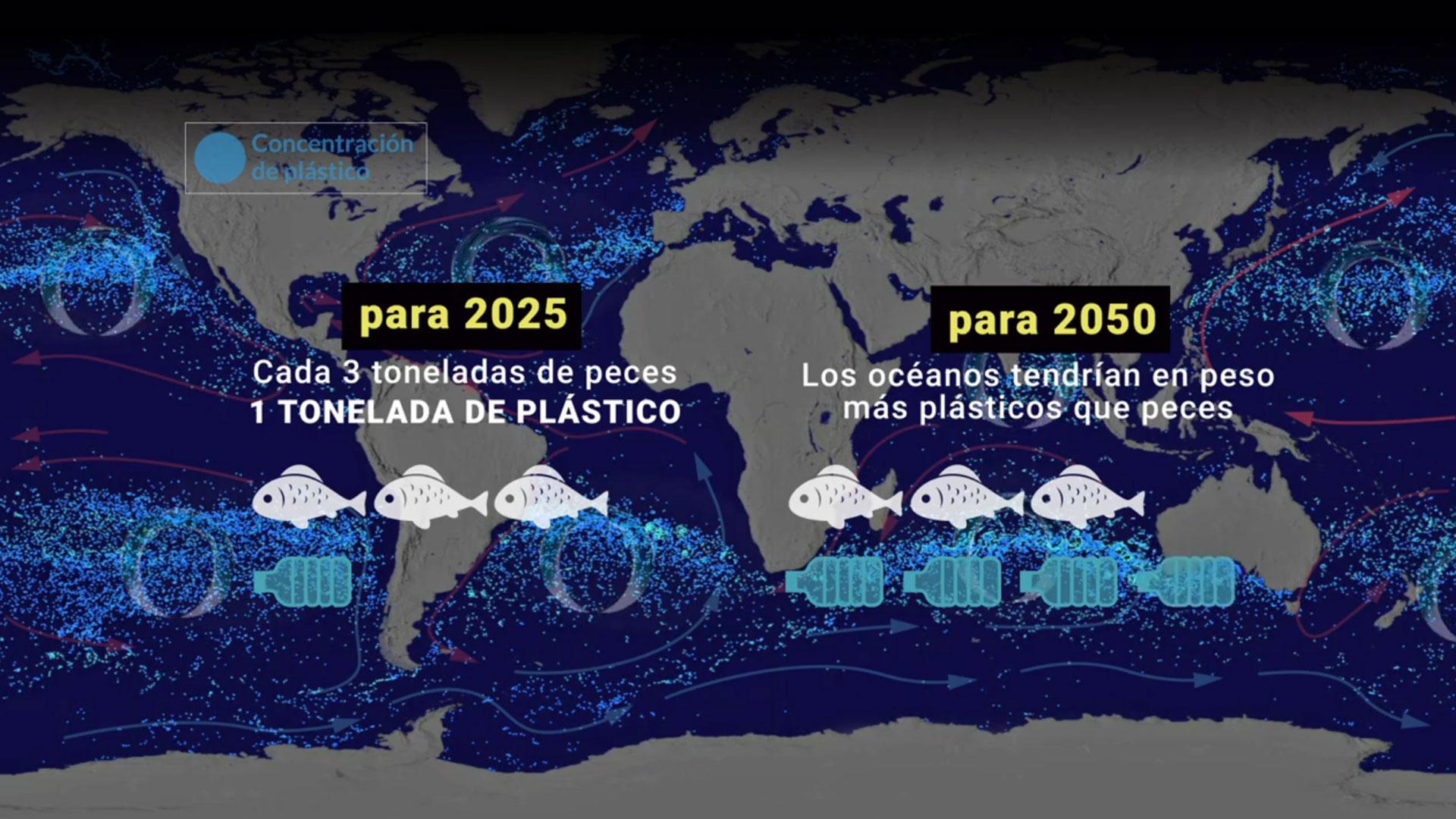 Según los expertos, si la humanidad sigue a este ritmo, para 2050 habrá más plásticos que peces en los océanos.