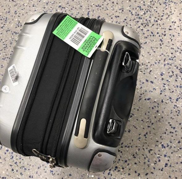 Mayim Bialik dijo que su maleta casi se rompe por correr tan frenética y agresivamente por el aeropuerto para poder subir a su vuelo (Foto: Instagram)
