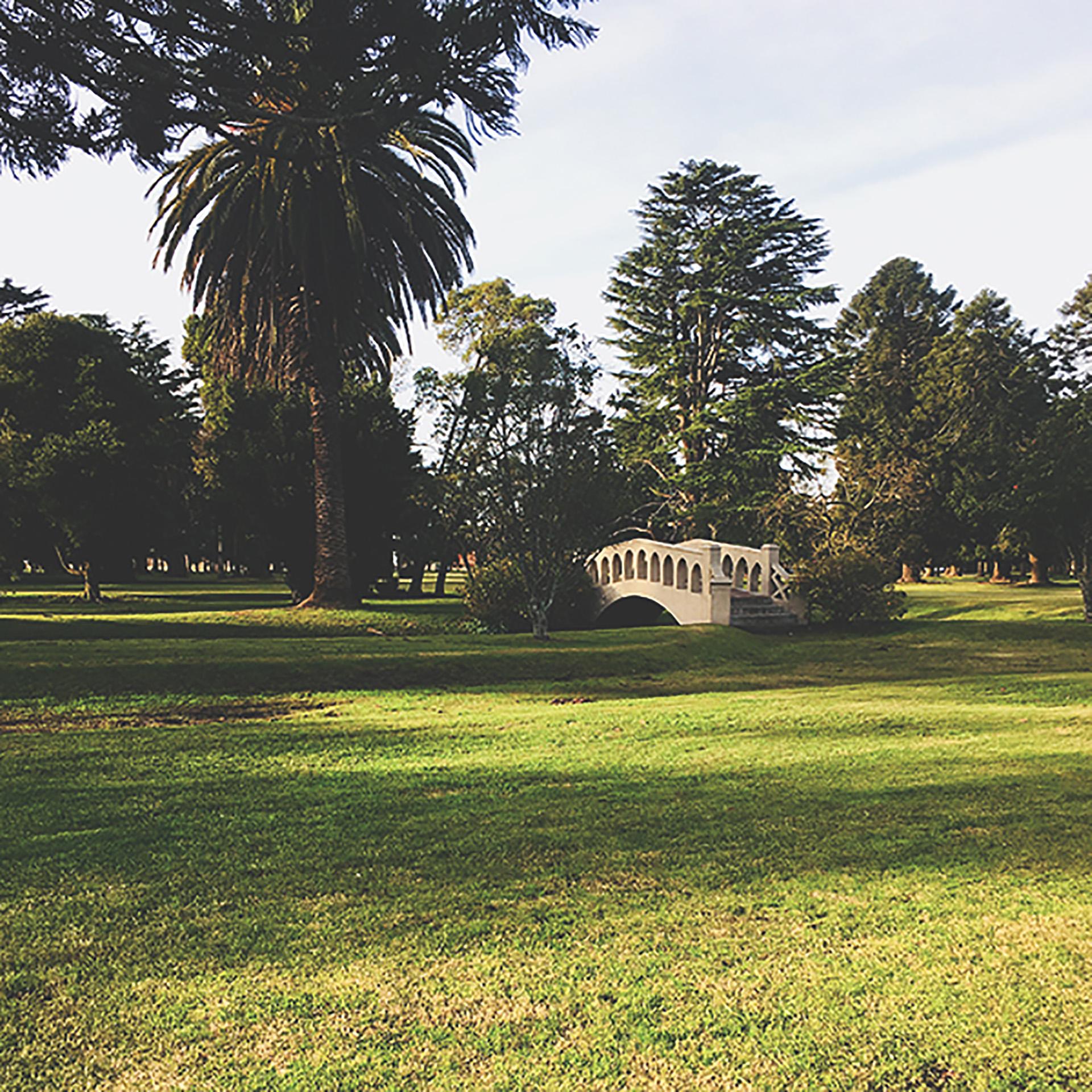 La parquización de los jardines invitan a contemplar su belleza al aire libre