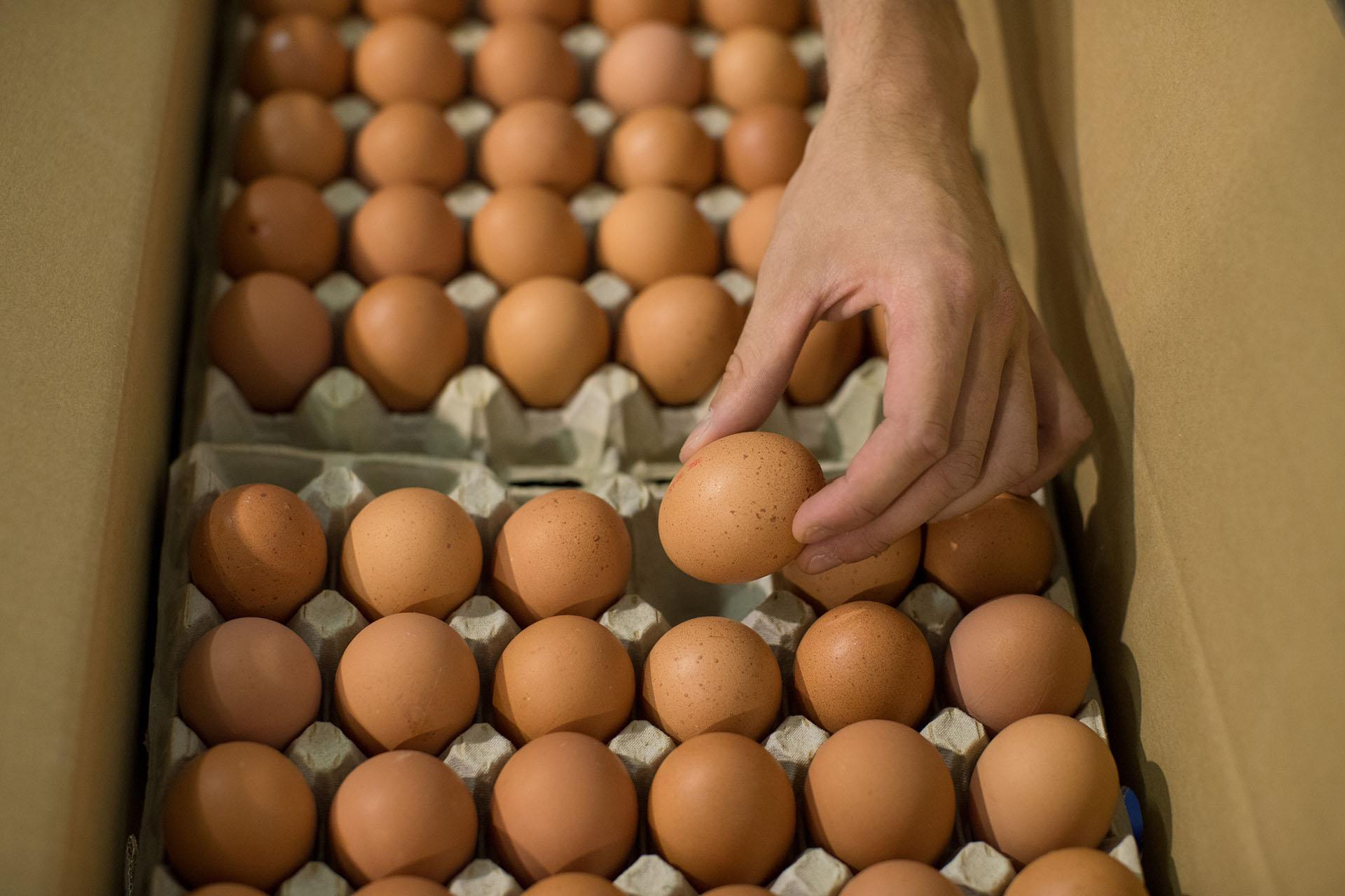 Tiene mucho valor nutritivo pero, en exceso, el huevoafectael corazón. (Jasper Juinen/Bloomberg)