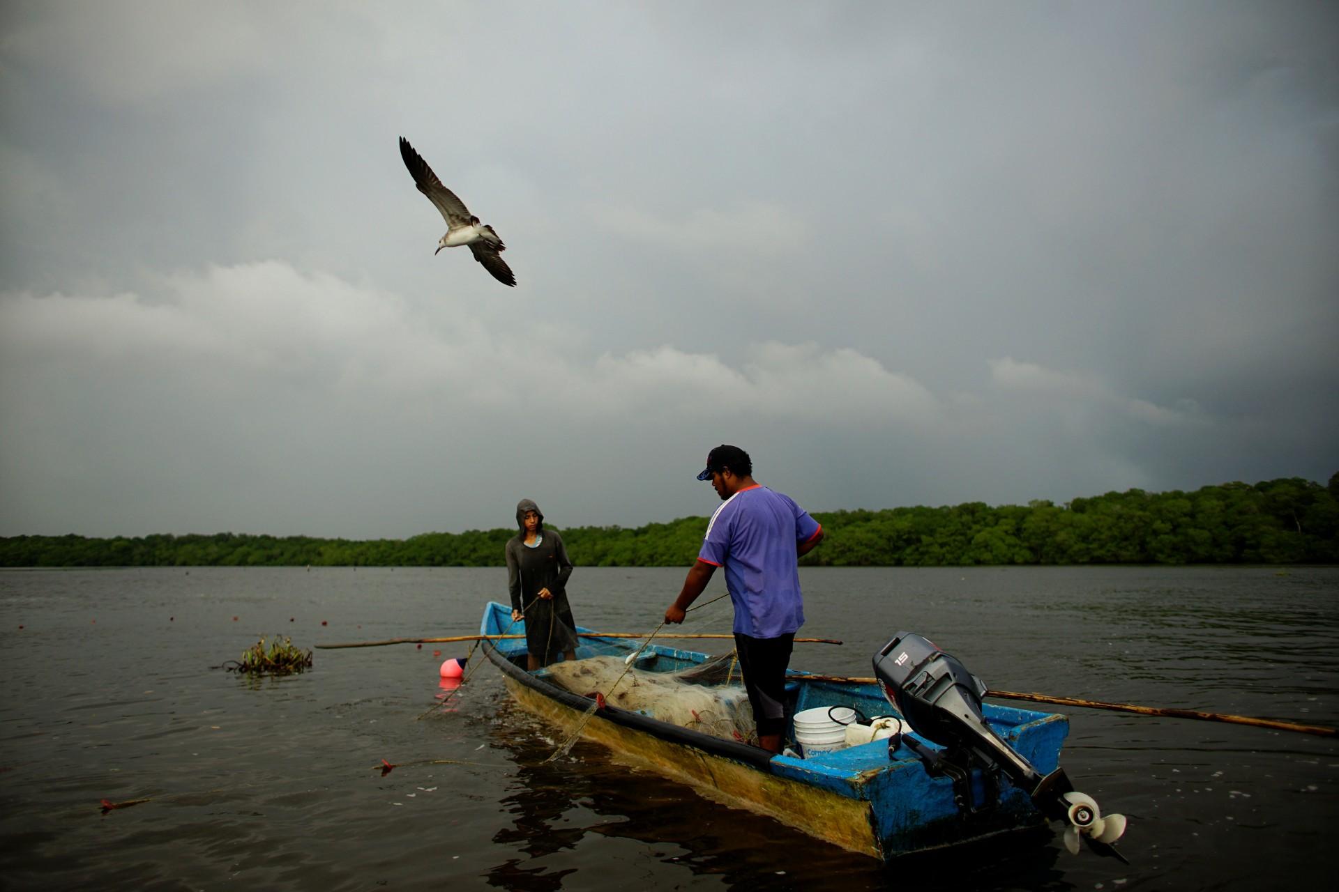 Una gaviota vuela sobre los pescadores en la laguna de Mecoacan, cerca de Paraiso, México, el 9 de diciembre de 2018.