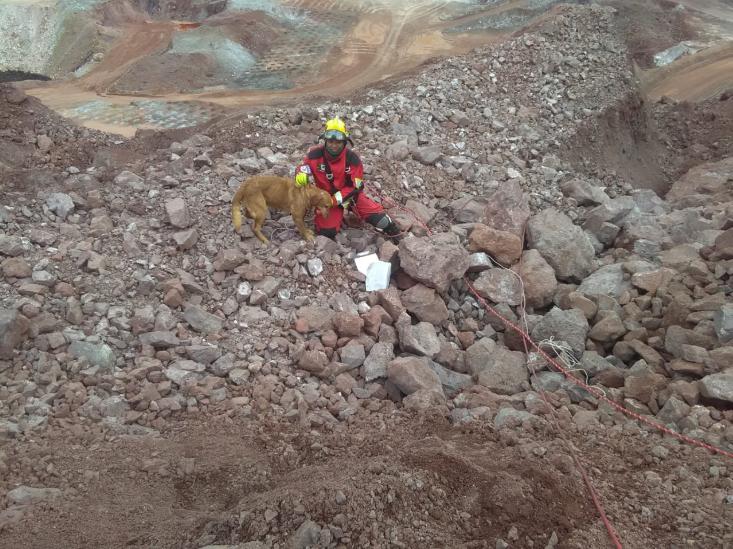 Puppy durante un operativo de rescate (Foto: Twitter @PCJalisco)