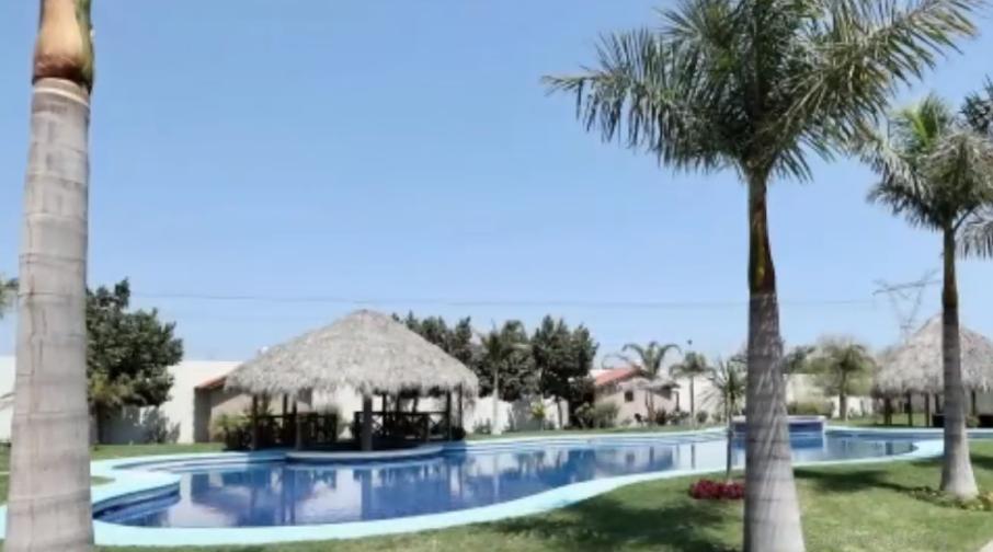 La casa cuenta con alberca, palapas y esculturas de piedra (Foto: Captura de pantalla/ Grillonautas)