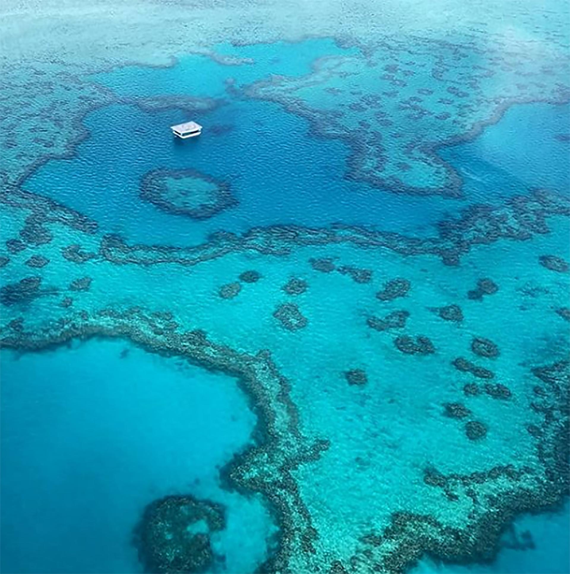 La barrera del coral desde el cielo (@me_cash)