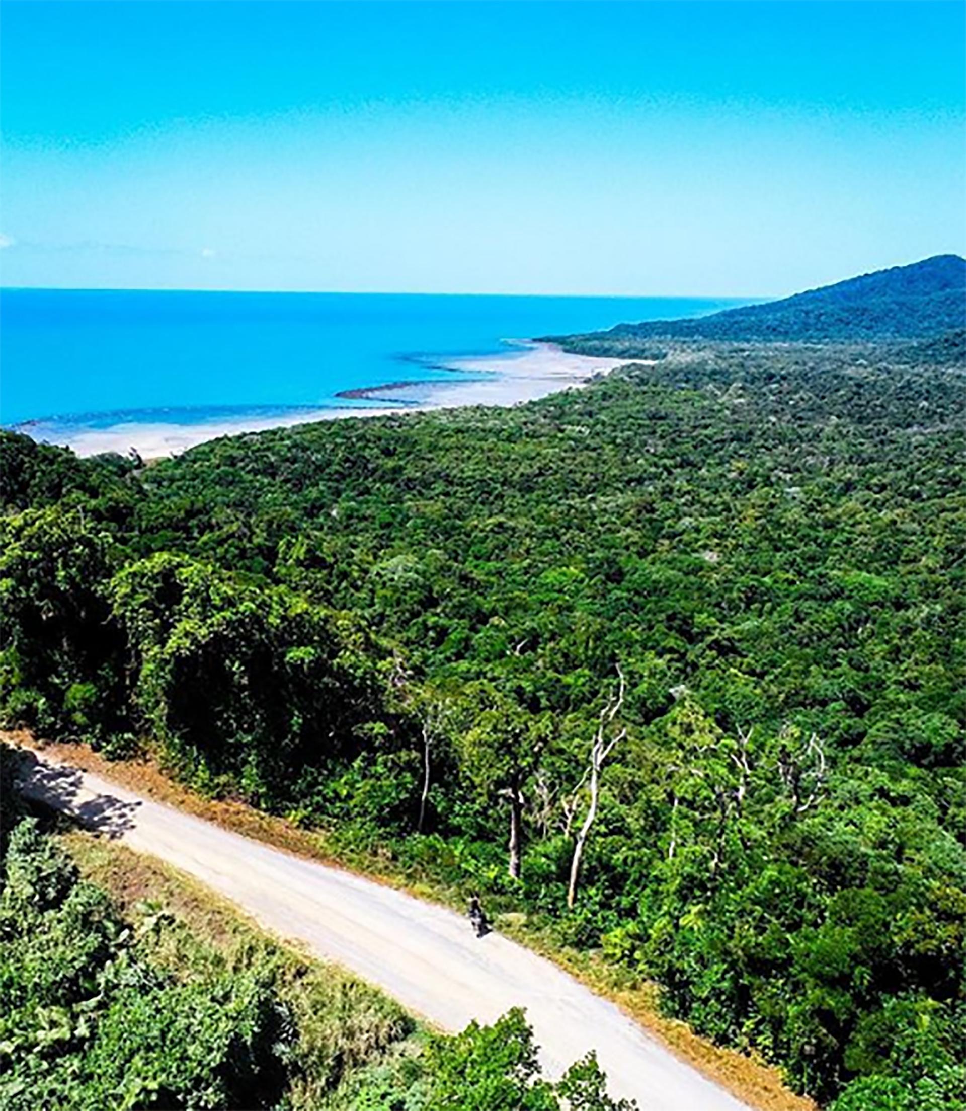 El bosque tropical de Daintree es el más antiguo de la tierra (@oneridearmy)