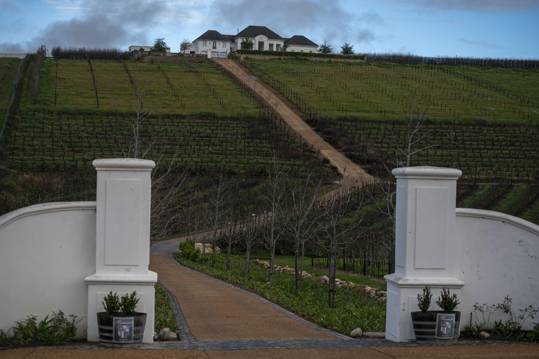 Una granja vinícola en Stellenbosch, una región conocida por sus uvas chenin blanc y pinotage. (Joao Silva/The New York Times)