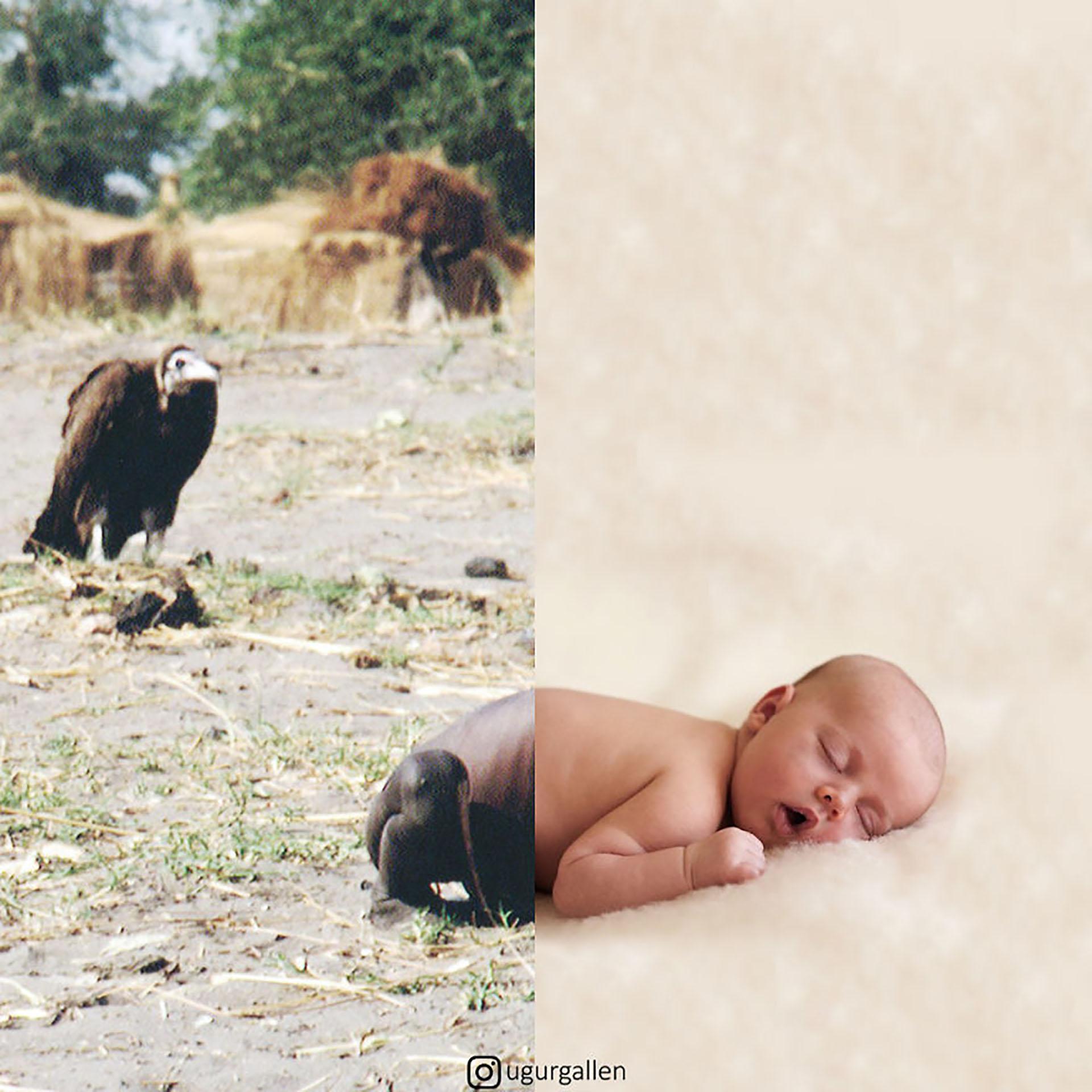 Un cuervo junto a un niño muerto de hambre en Sudán y otro bebé durmiendo plácidamente