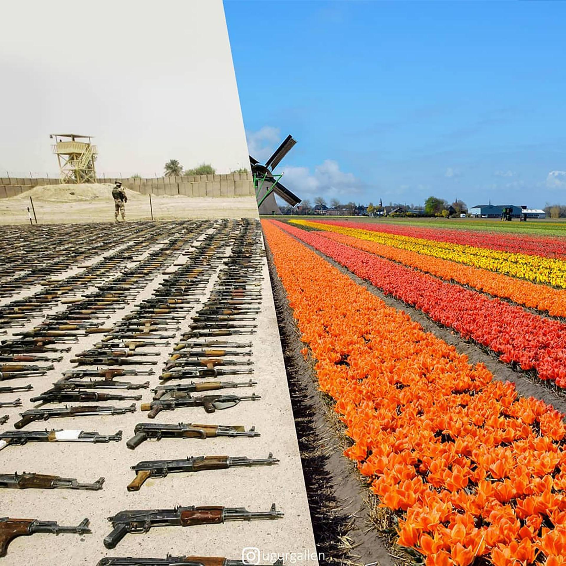 Un campo con armas decomisadas en Irak y un campo de flores (@ugurgallen)