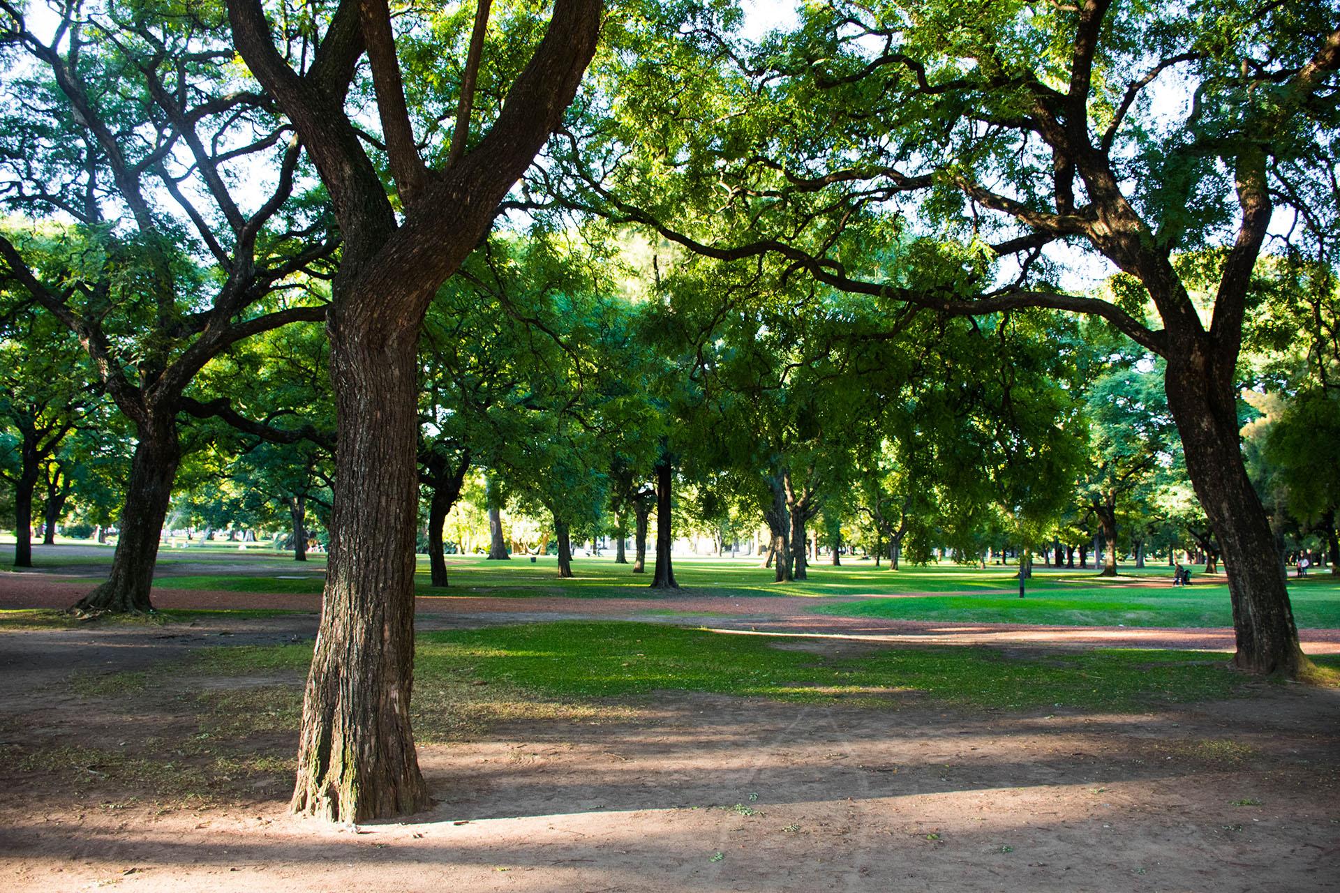 Los bosques de Palermo son el pulmón verde de la Ciudad de Buenos Aires