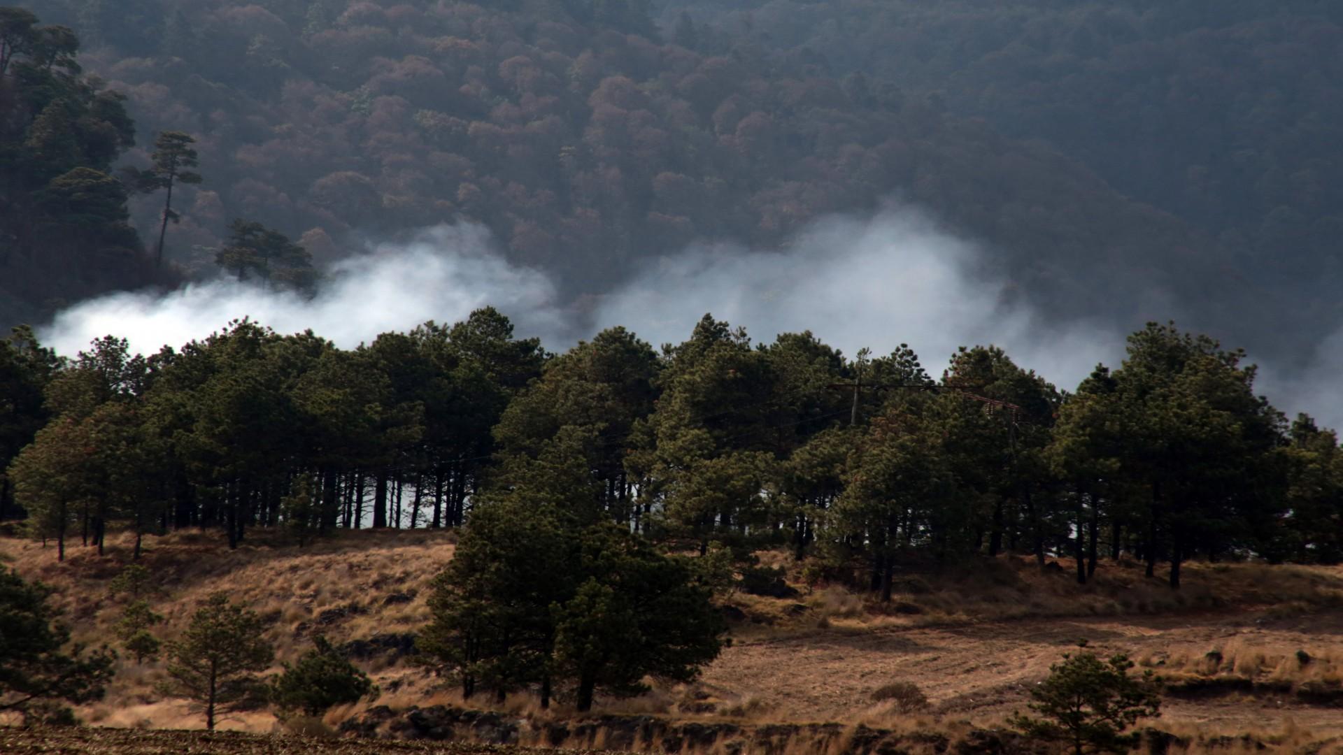 Las actividades agrícolas son la principal causa de incendios (Foto: Cuartoscuro)