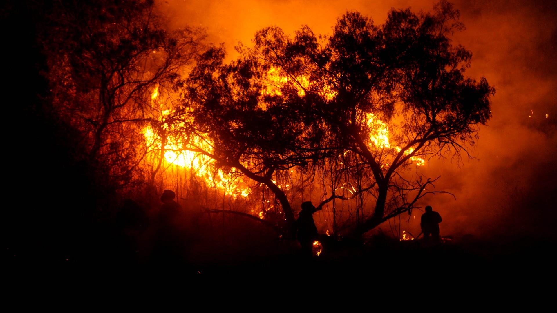 Se espera que mayo sea un mes crítico durante esta temporada de incendios (Foto: Cuartoscuro)