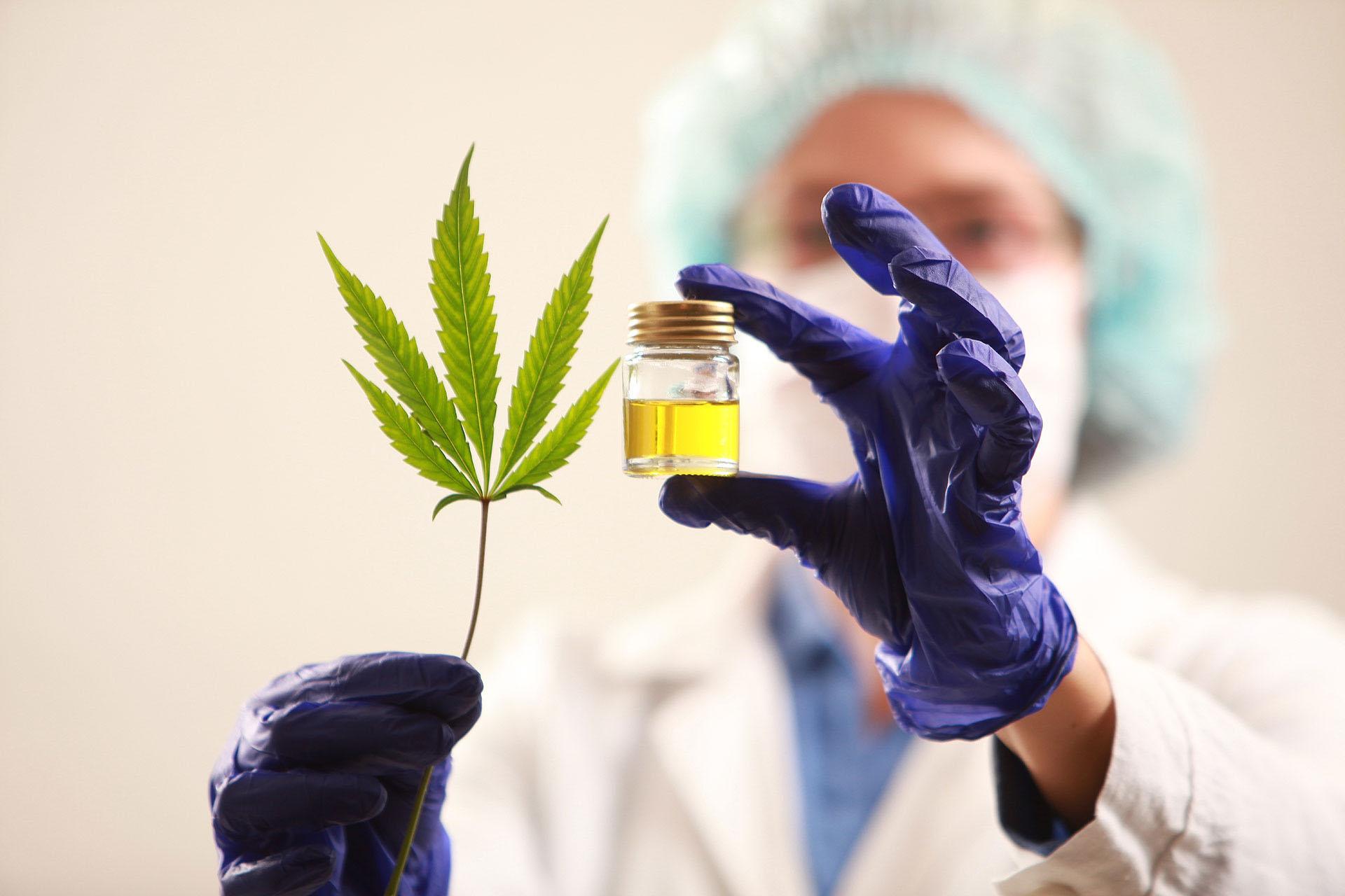 """""""En salud mental el cannabis funciona para múltiples afecciones: autismo, Alzheimer, depresión, ansiedad, esquizofrenia, epilepsias con síntomas psicóticos"""", señala la Dra. Celeste Romero, psiquiatra e investigadora del Centro de Estudios de la Cultura Cannábica."""