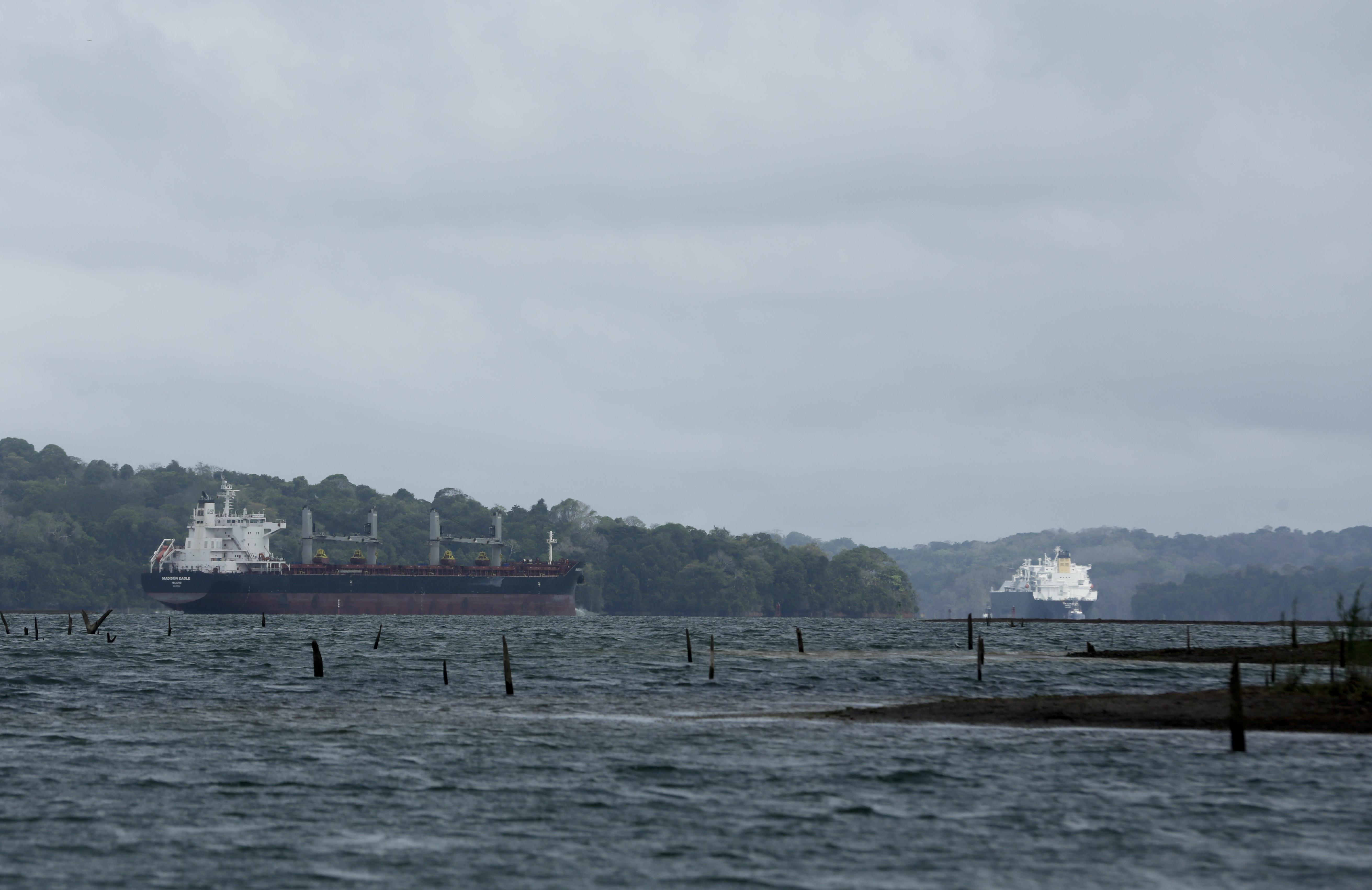 En esta imagen, tomada el 21 de abril de 2019, un buque mercante recorre el Canal de Panamá en ruta hacia el Océano Atlántico, mientras troncos de árboles que solían estar sumergidos quedan a la vista por el bajo nivel del agua en el lago Gatún, en Panamá. (AP Foto/Arnulfo Franco)