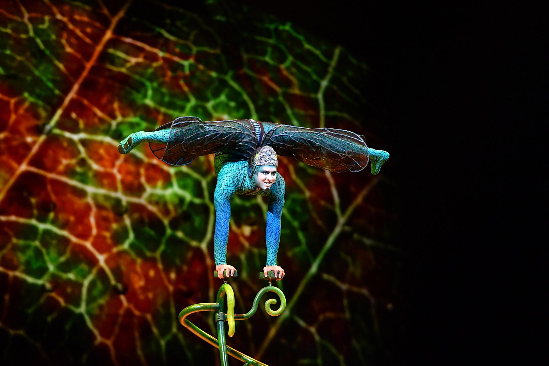 """Luego de su estreno en Montreal, Canadá,""""OvO"""" viajó por más de treinta ciudades en seis países distintos en el formato """"Big Top Show"""" (Cirque du Soleil)"""