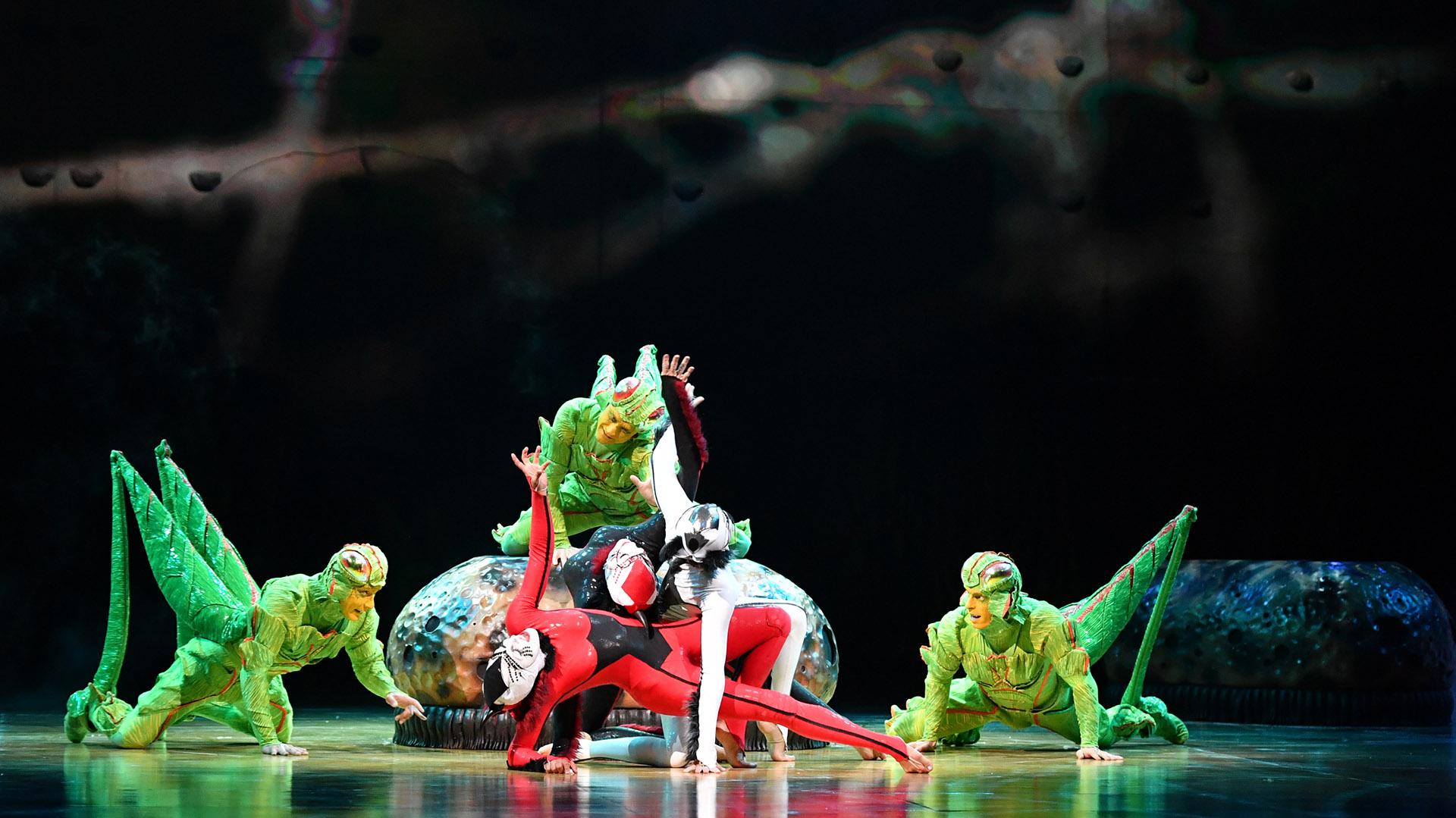 """Los grillos también son parte de la historia de """"OvO"""", presentando sus elásticas formas, aptas para todo tipo de destrezas (Cirque du Soleil)"""