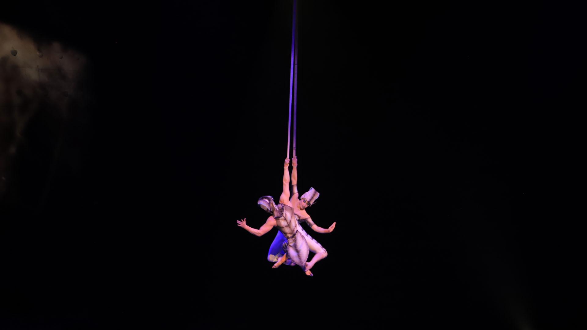 """Las acrobacias aéreas son el punto más alto y lo más festejado de """"OvO"""", el show del Cirque du Soleil que está girando por Sudamérica (Lihueel Althabe)"""