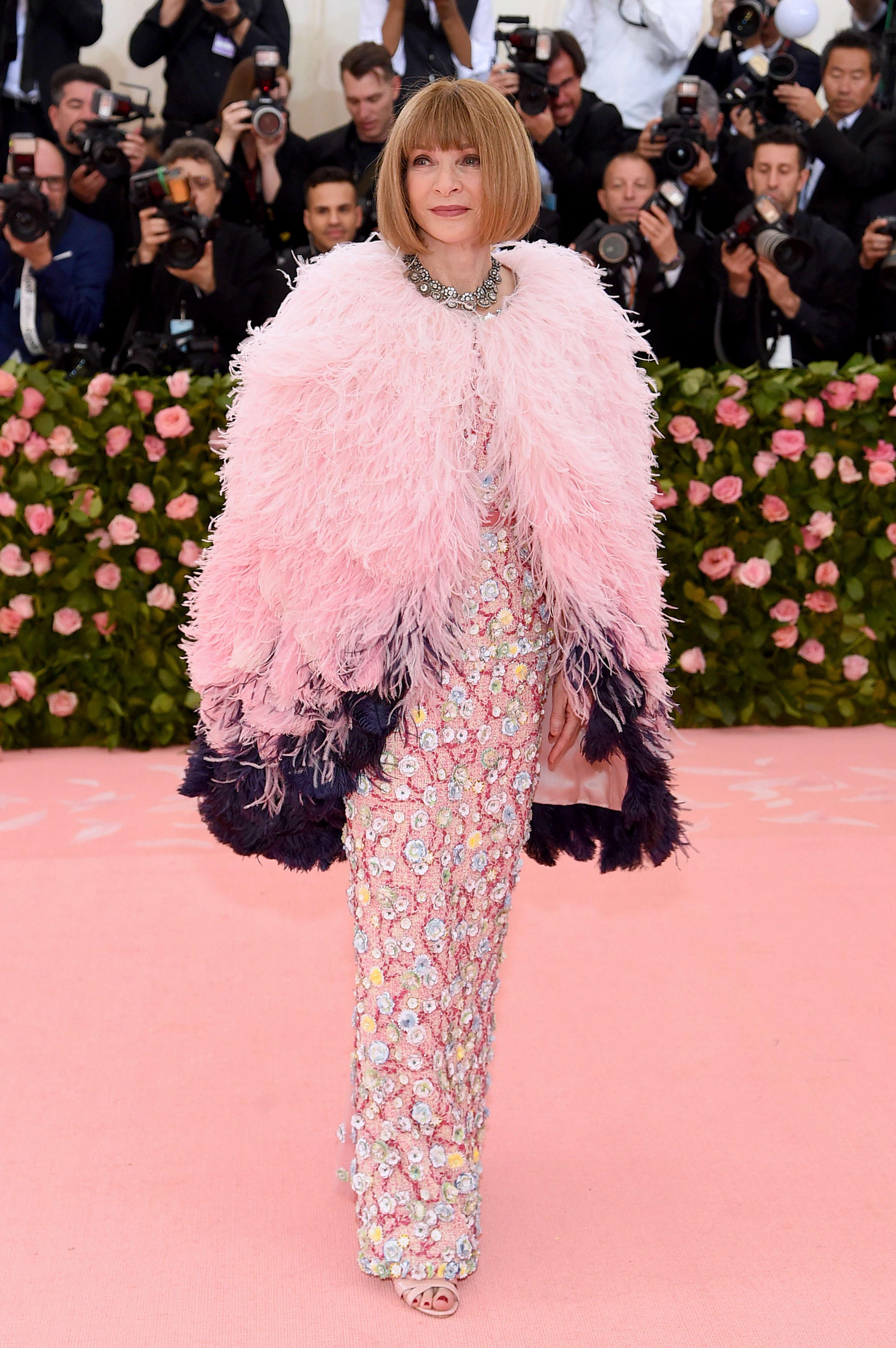 Anna Wintour por Dior.