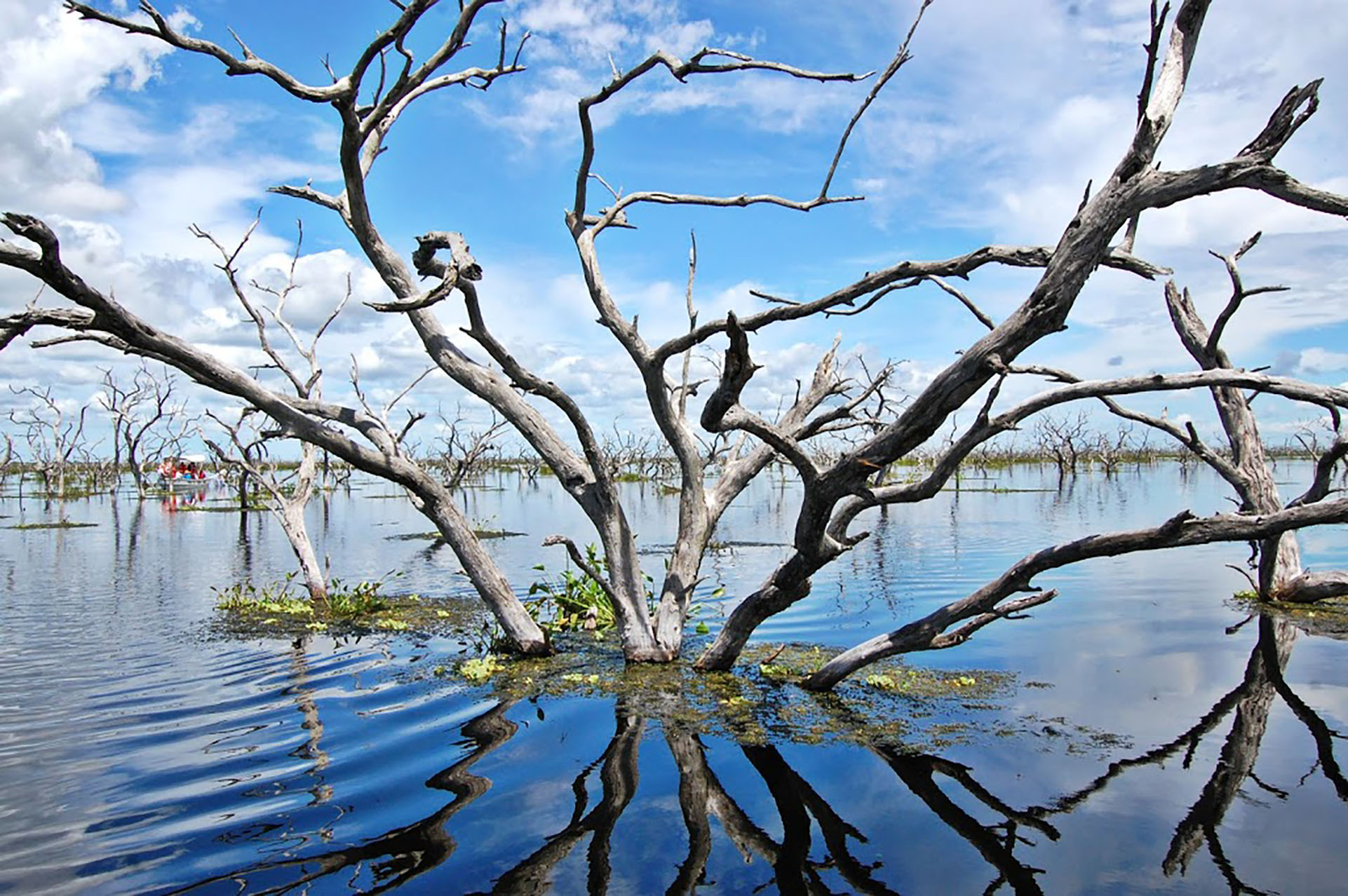 Es el segundo humedal más grande de Argentina. Ubicado al norte de la localidad de Las Lomitas, se encuentra inundado la mayor parte del año por las lluvias y los desbordes del Río Pilcomayo