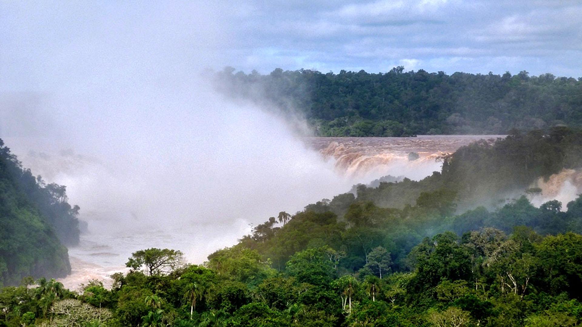 La selva misionera cobija atenta y diversa a las Cataratas del Iguazú (Fotos NA)
