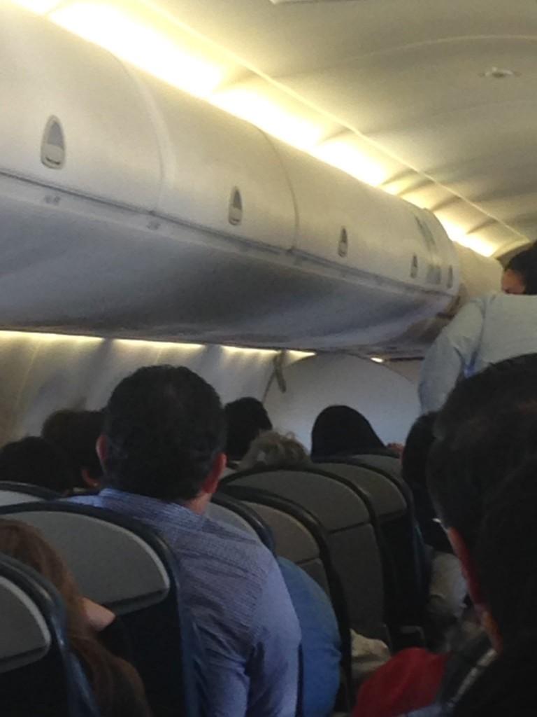 La foto de la serpiente en un vuelo de Aeromexico en 2016 (Foto: Archivo)