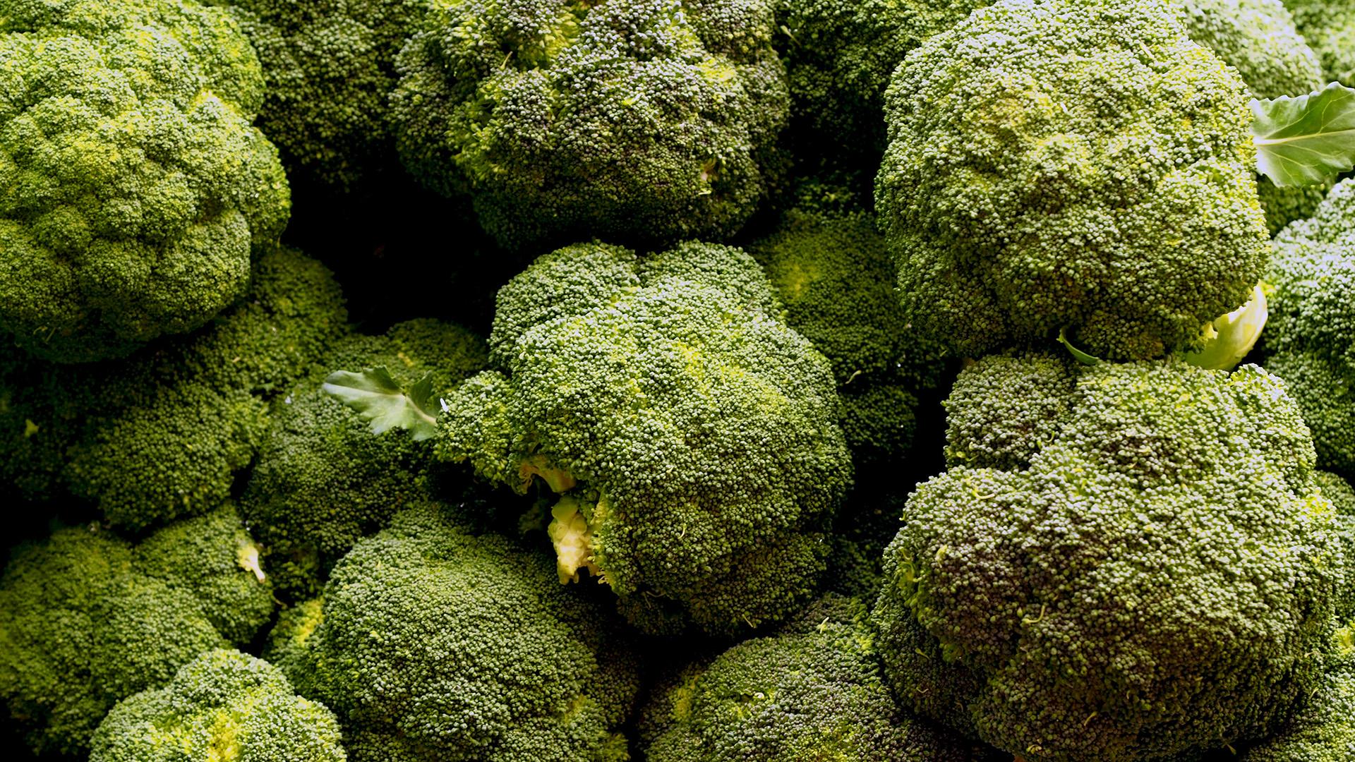 El estudio que buscó potenciar las sustancias benéficas para la salud humana que tiene el brócoli y aumentar su vida útil después de la cosecha fue realizado por investigadores de la Facultad de Agronomía