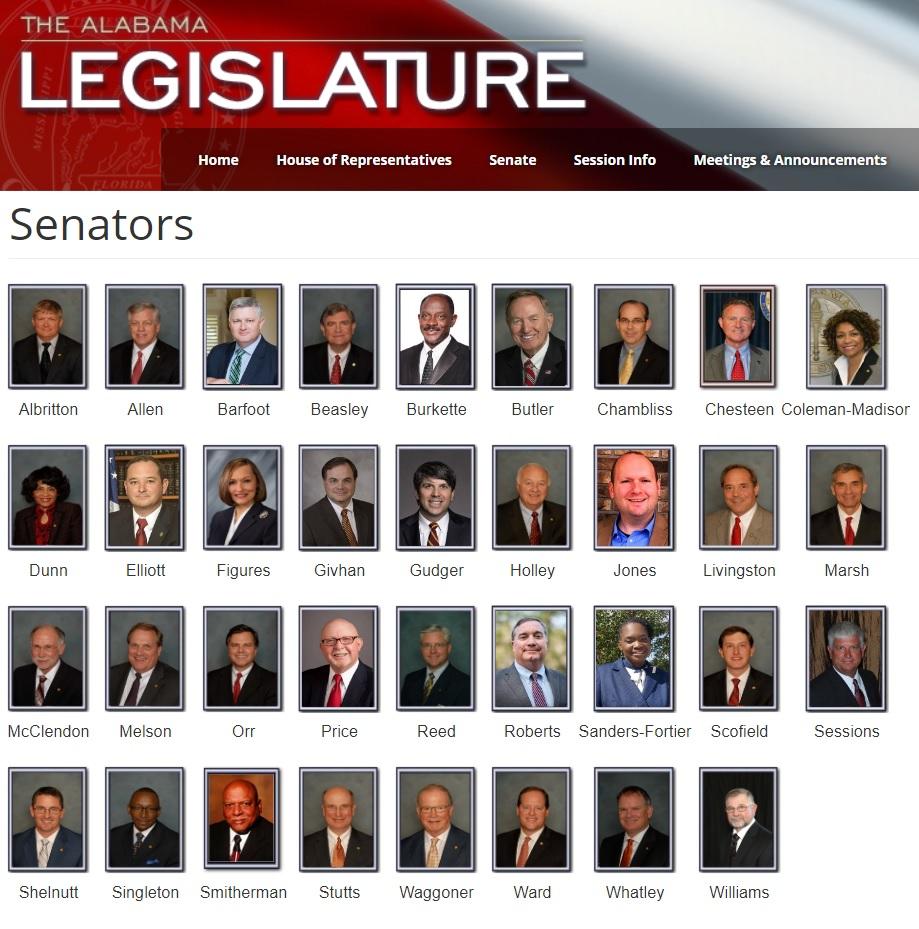 La página de la legislatura hace evidente la desproporción: solo hay cuatro mujeres entre los 35 senadores