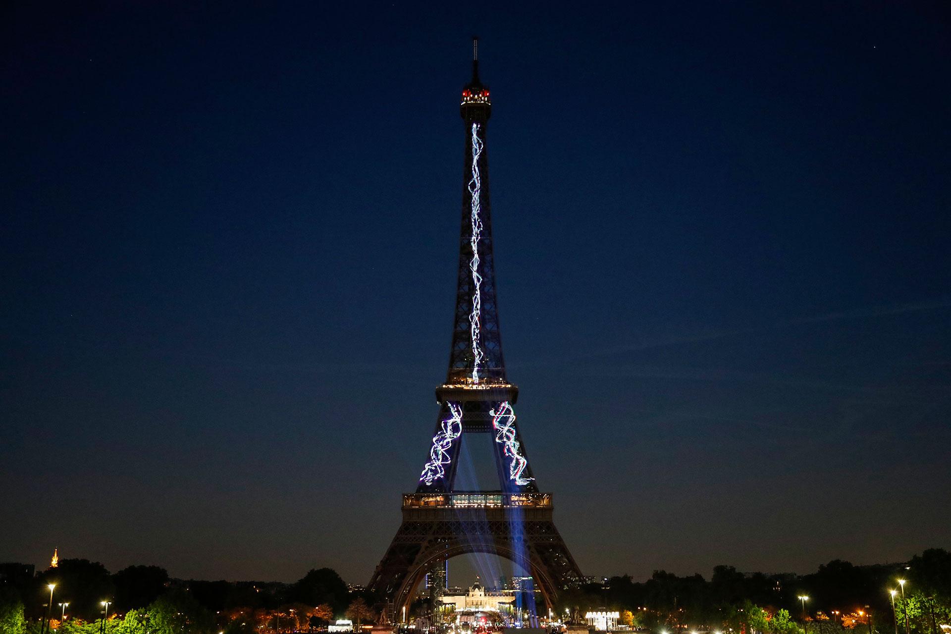 Construida para la Exposición Universal de 1889, con una altura de 324 metros y un peso de 7.300 toneladas, la Torre Eiffel atrae a casi siete millones de visitantes cada año.
