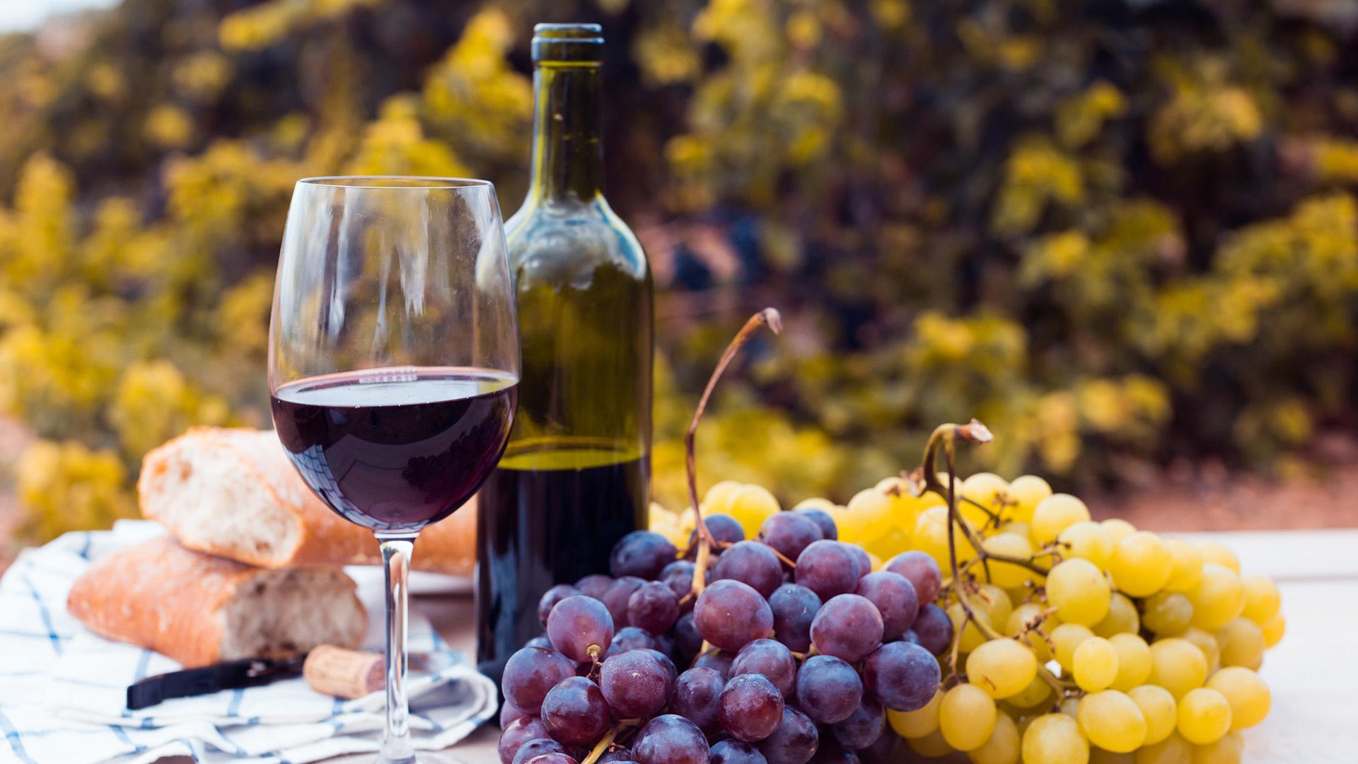 El vino de la independencia: 9 malbecs para brindar este 9 de Julio -  Infobae