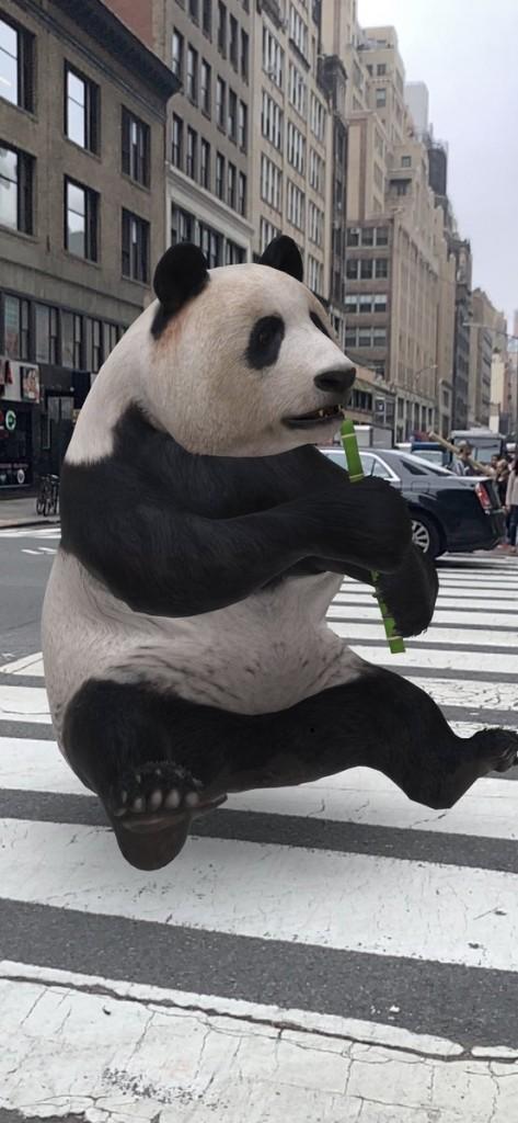 Un panda en plena ciudad de Nueva York, gracias a la realidad aumentada (Foto: Twitter @jetscott)