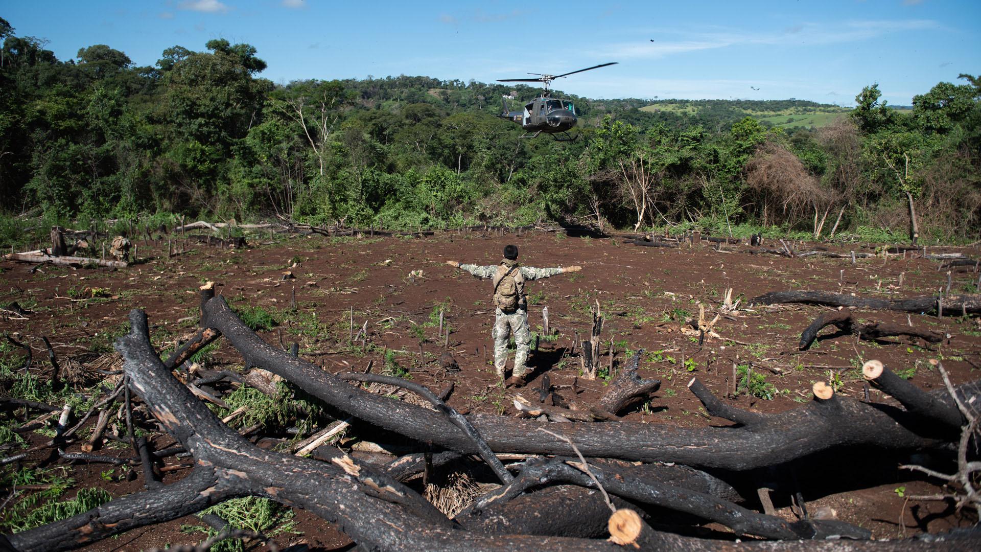 Llega en el claro: miembros de las fuerzas especiales paraguayas en el operativo.