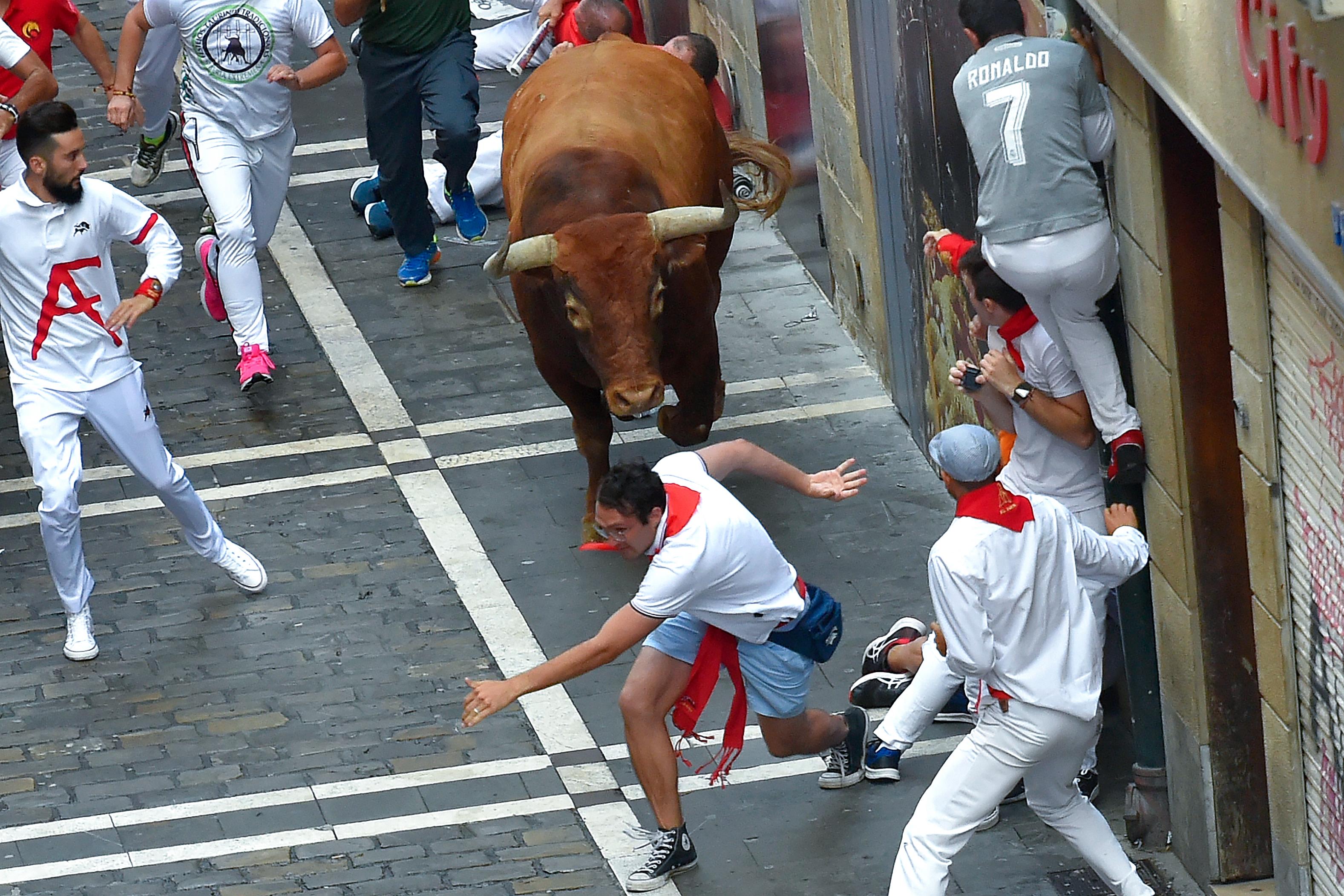 Los toros rezagados suelen desorientarse y se abalanzan contra la gente con más frecuencia