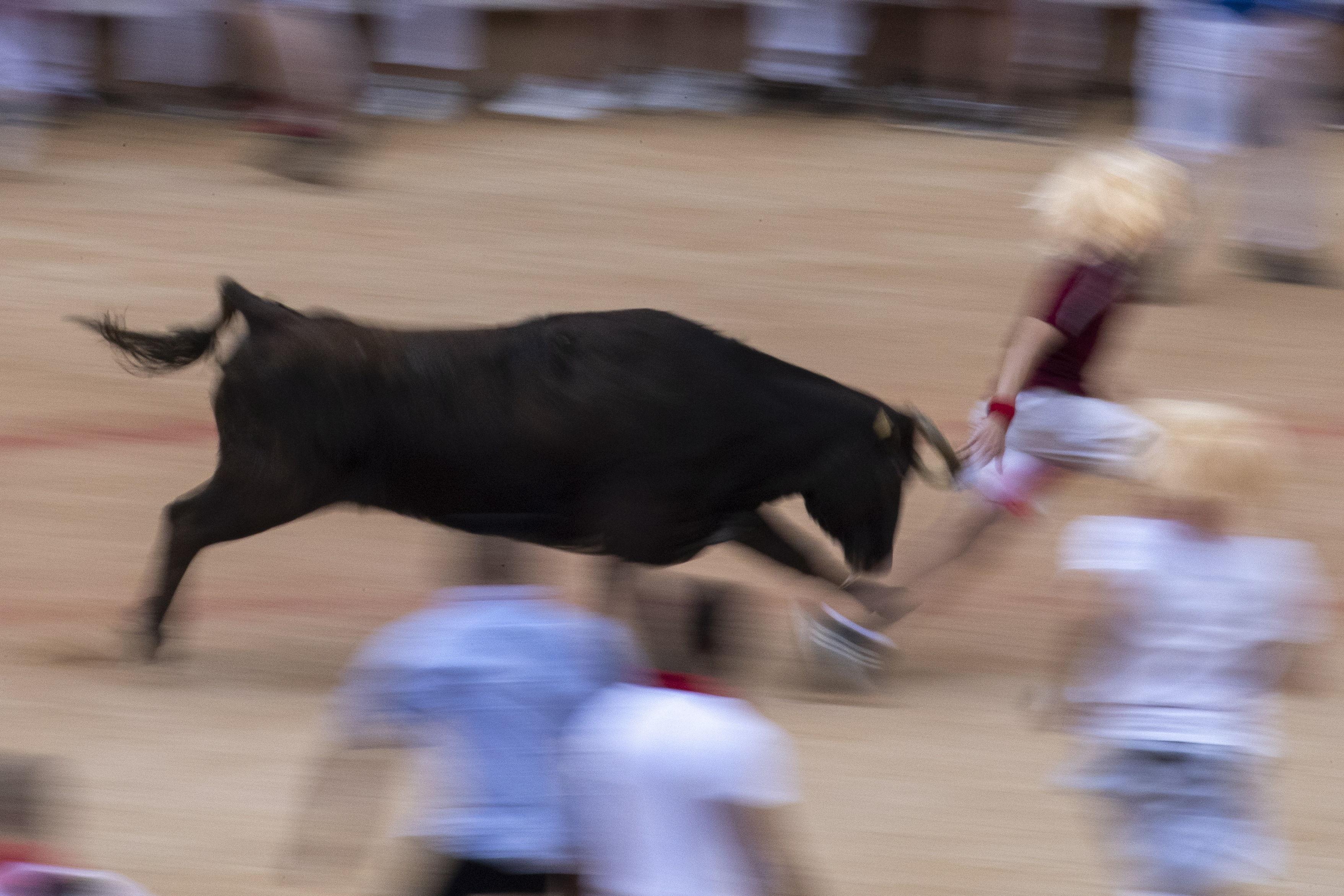Los sanfermines, una de las fiestas más populares de España, despiertan un gran interés internacional, como lo demuestra, no solo los miles de personas de todo el mundo que llegan a Pamplona, sino también el número de periodistas que lo siguen