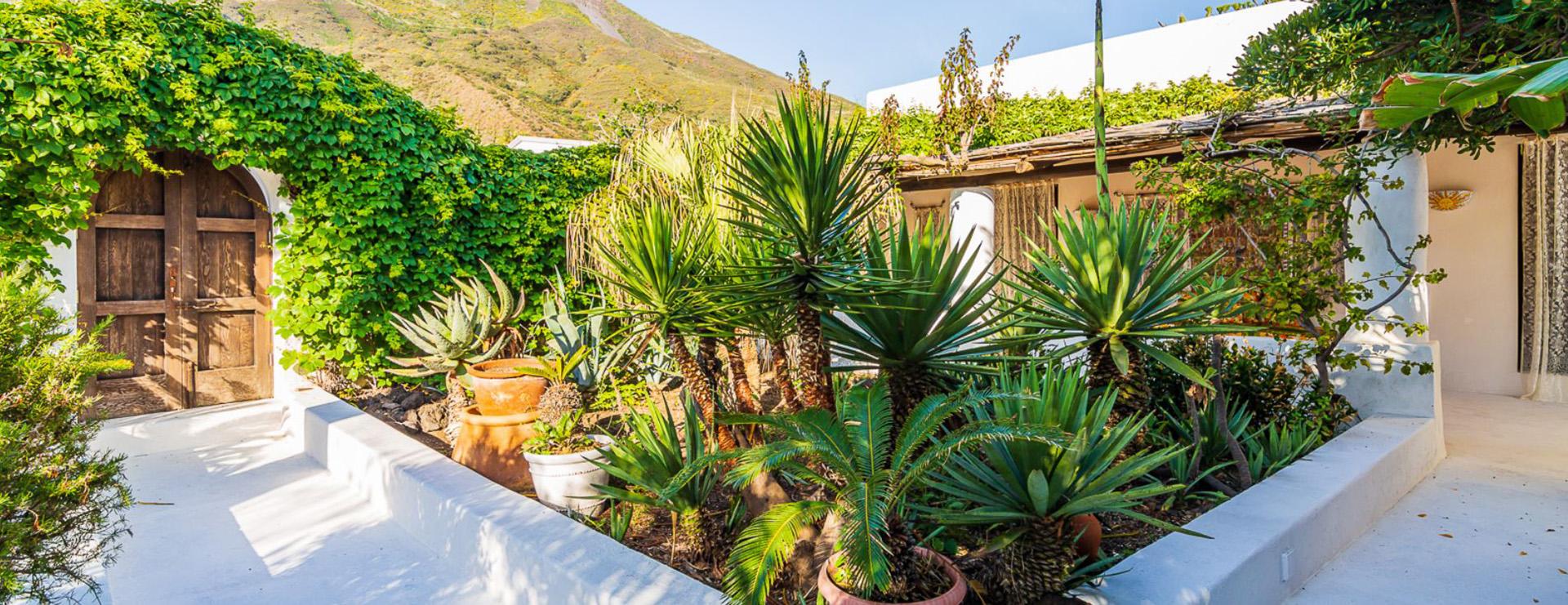 La isla también está cubierta de fauna mediterránea, con palmeras, olivos y cítricos fragantes que se extienden a lo largo de las laderas del encantador volcán
