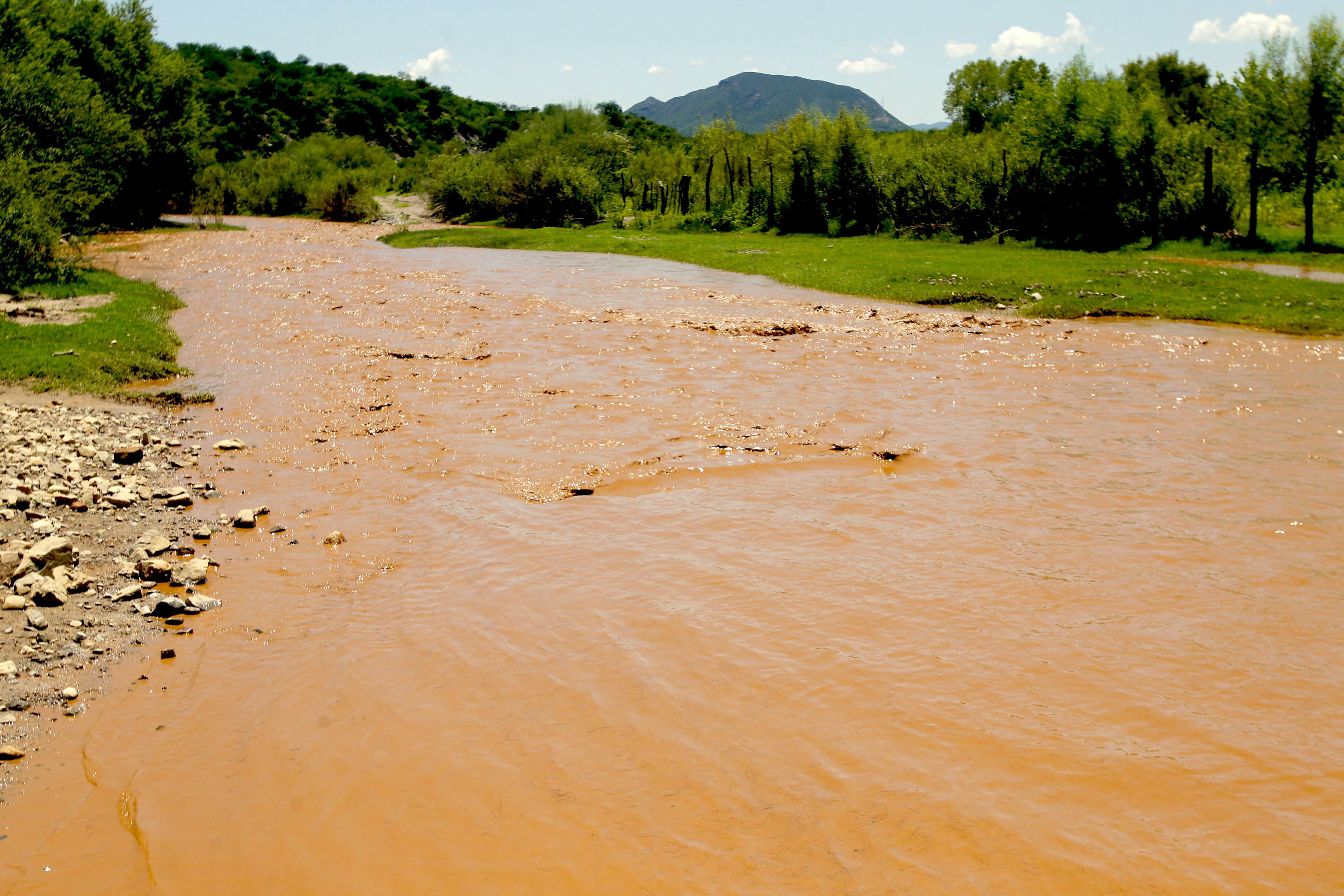 Revisará la SCJN amparo contra Grupo México por derrame tóxico en río Sonora