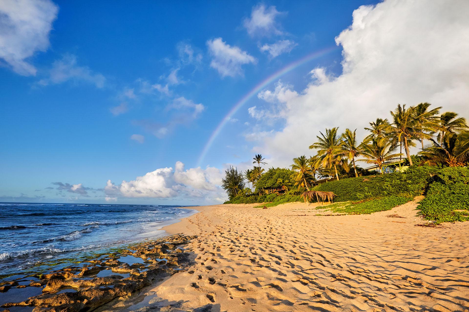 Sunset Beach es conocida por ser uno de las mecas del surf en el mundo. En los meses de invierno, uno de los más importantes para este deporte, se pueden observar olas grandes de hasta 30 pies de altura, junto con las principales competiciones de surf del mundo