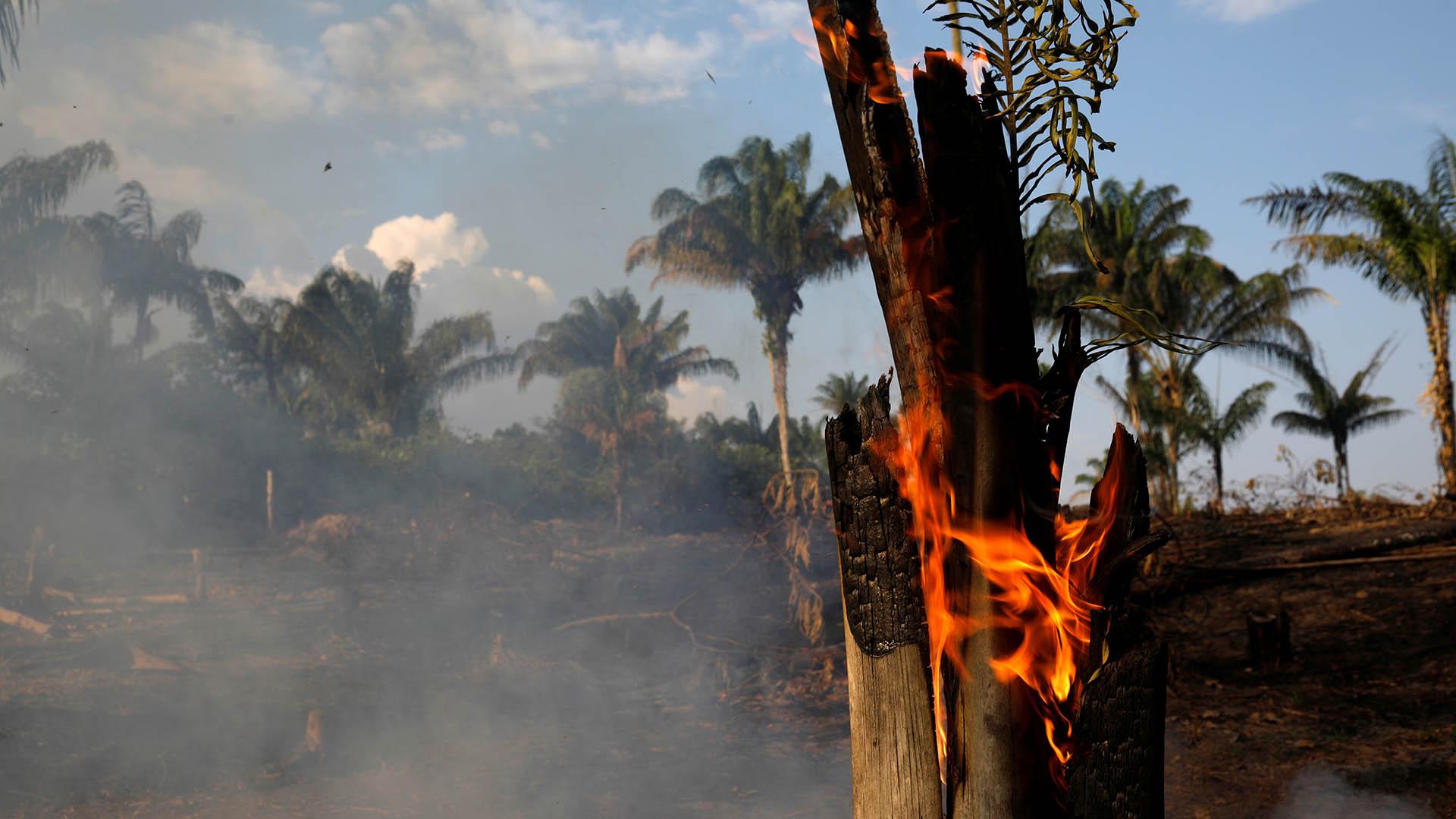 La preocupación llegó a los países vecinos (Reuters/ Bruno Kelly)