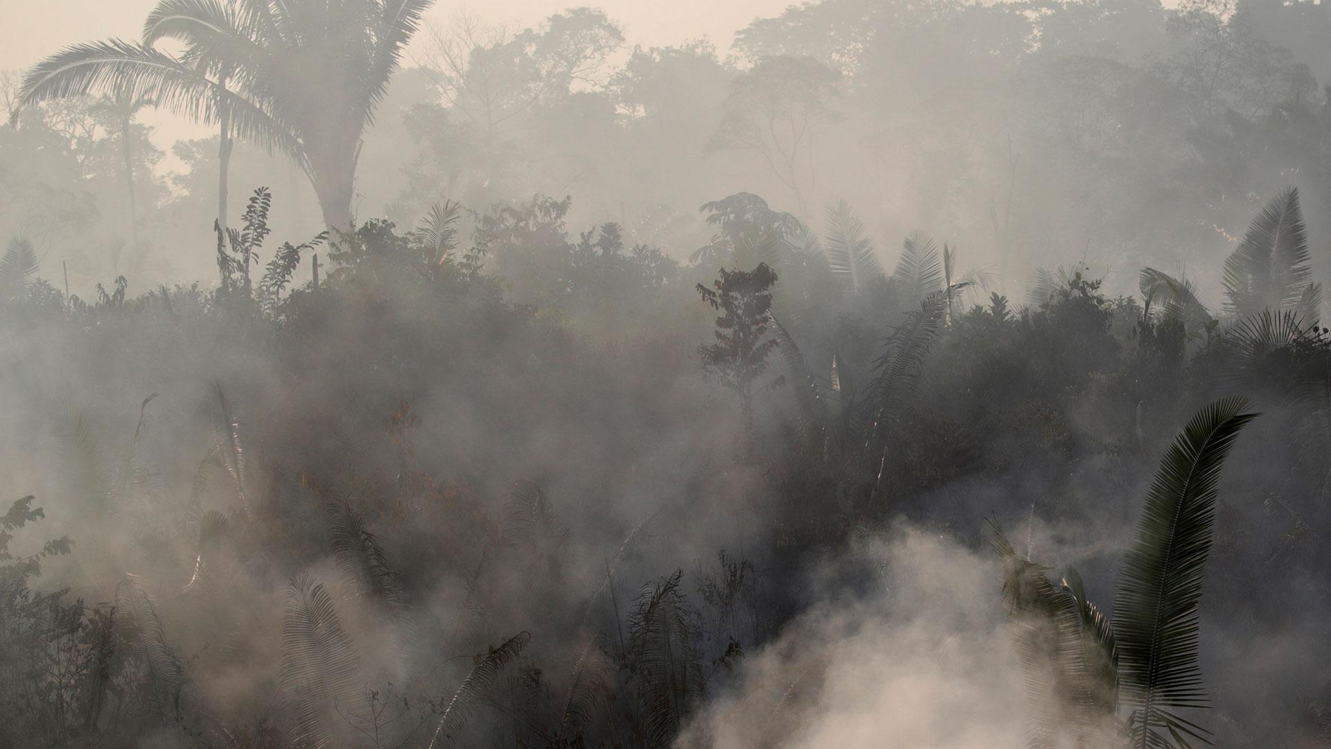 Aún cuando se sospecha que los incendios responden a una cada vez más agresiva deforestación, Bolsonaro ha sugerido que ciertas ONG, que no identificó, podrían estar promoviendo los incendios (Reuters)