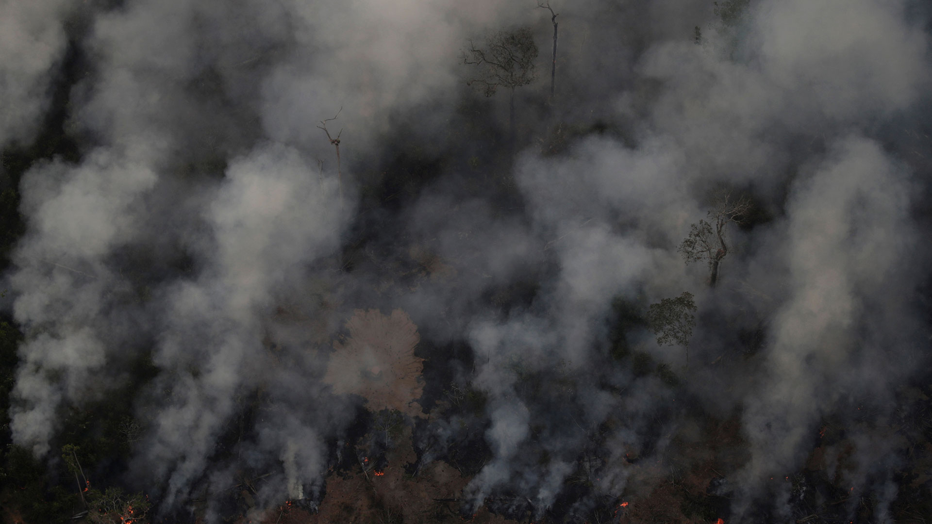 El INPE precisó que entre el 1 de enero y el 18 de agosto ha registrado 71.497 focos de incendio en el país y que un 52,5% se sitúan en la región amazónica (Reuters)