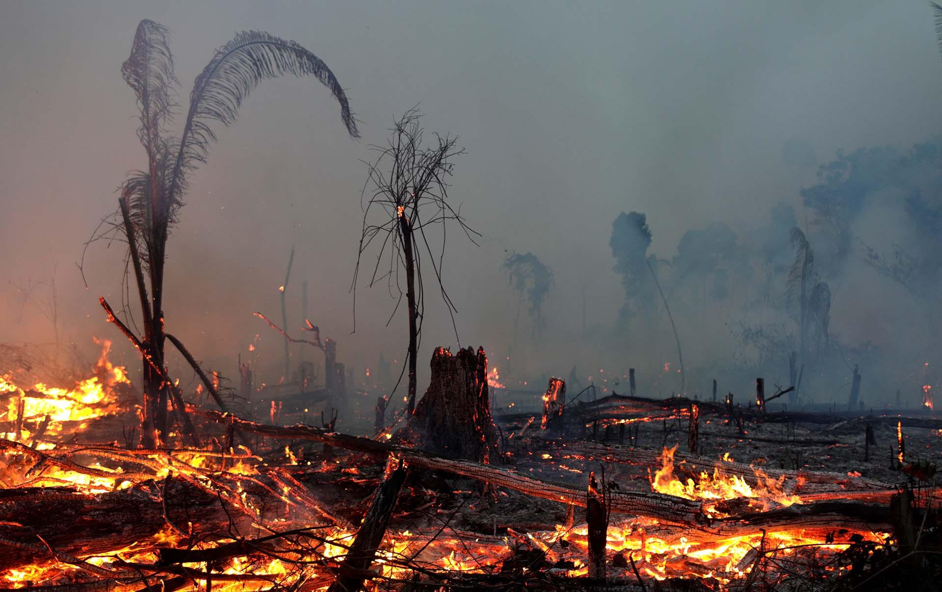 Hasta agosto, se habían superado los 80.000 focos activos de incendio en el Amazonas