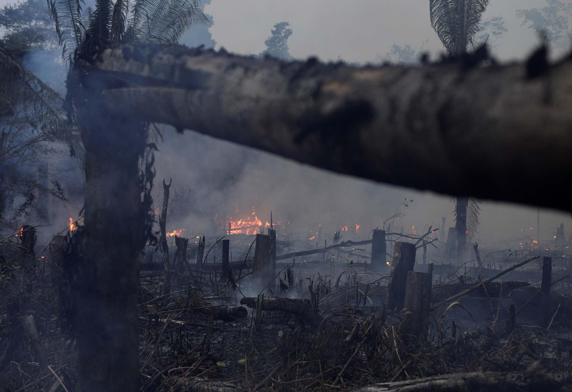 Grupos activistas apuntaron contra el gobierno de Jair Bolsonaro por los incendios