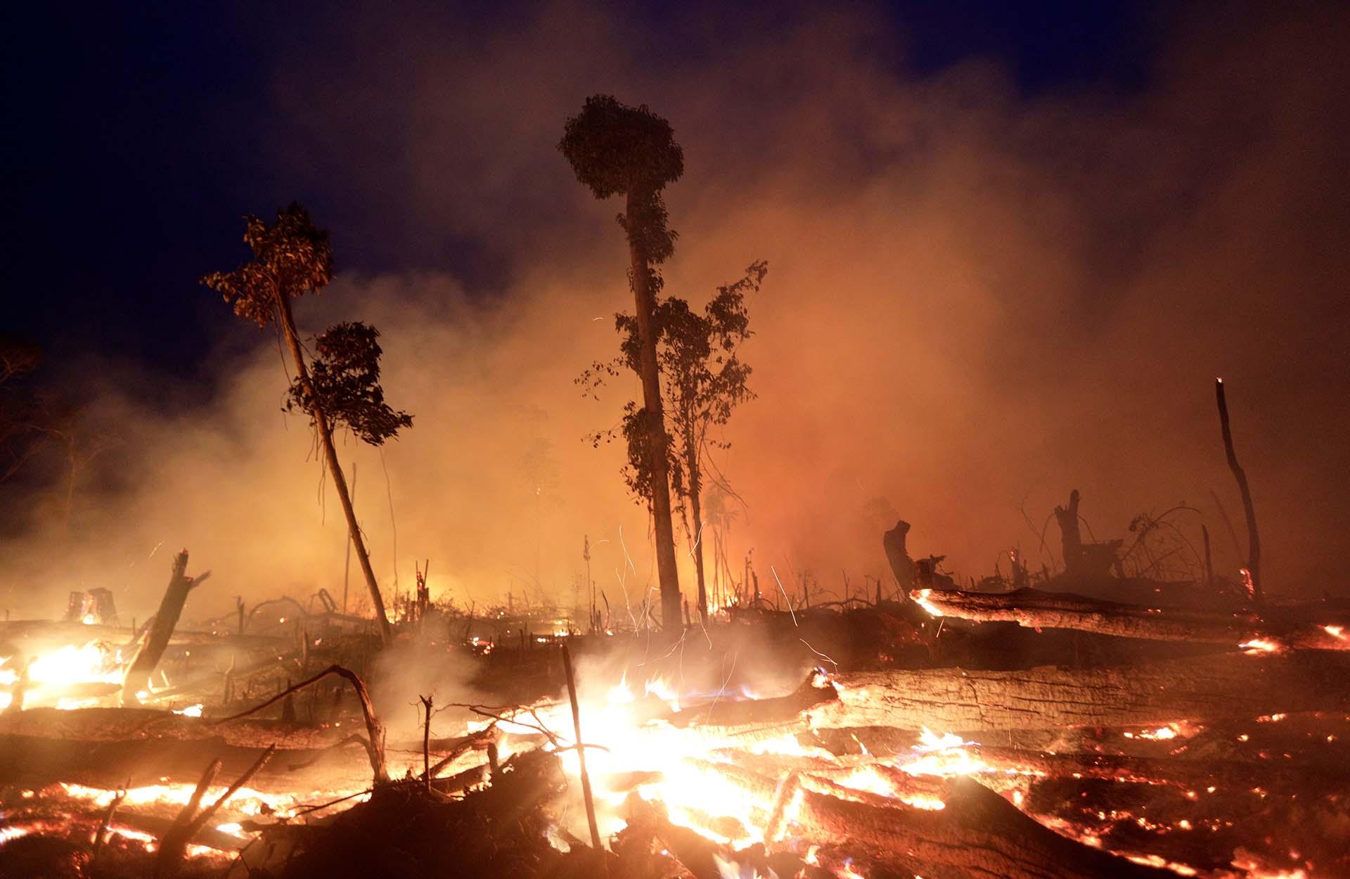 Humo, fuego y árboles caídos: una postal que se repite en varias zonas del Amazonas