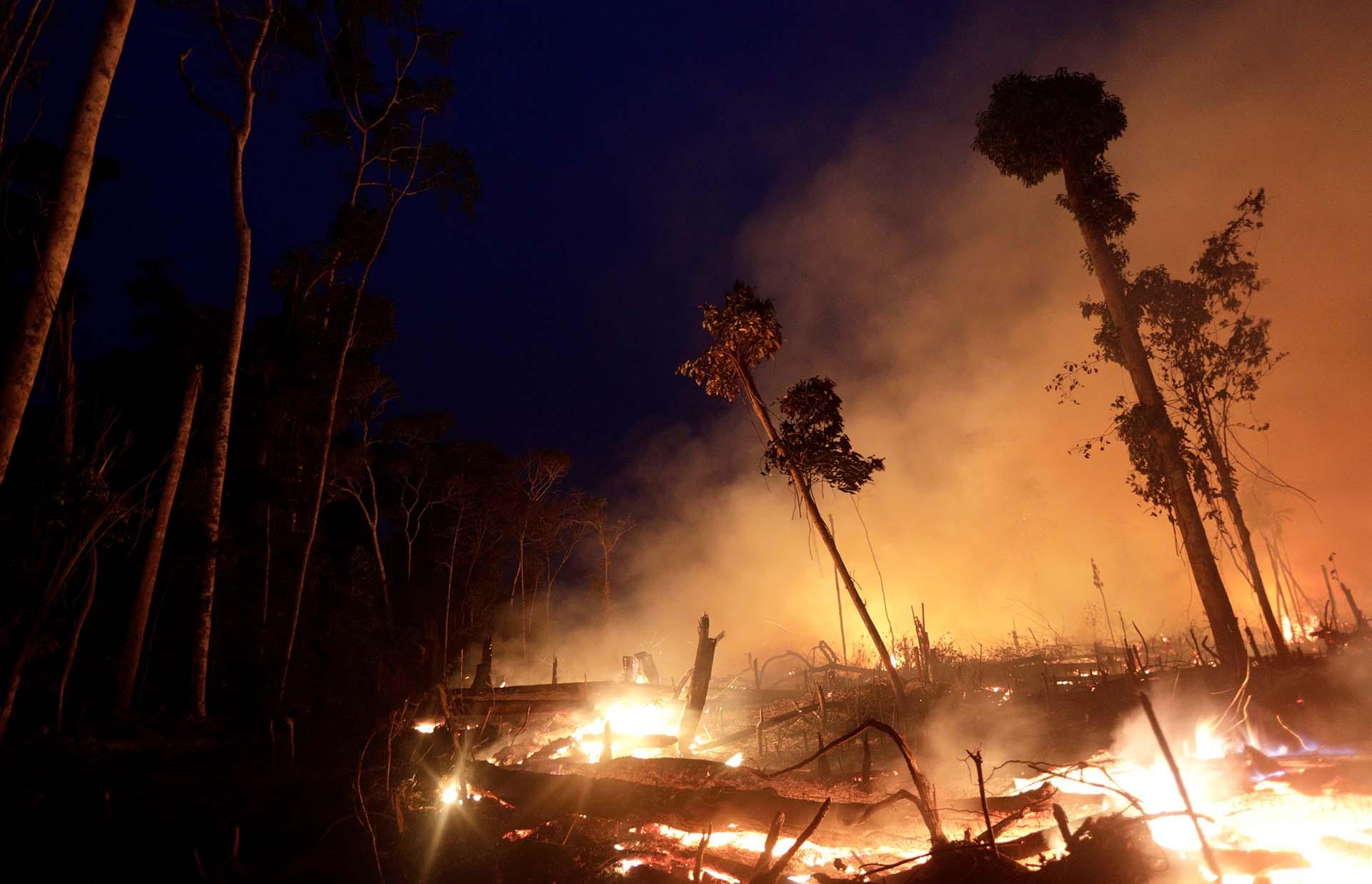 Un incendio quema una parte de la selva amazónica en el estado de Rondonia, en Brasil