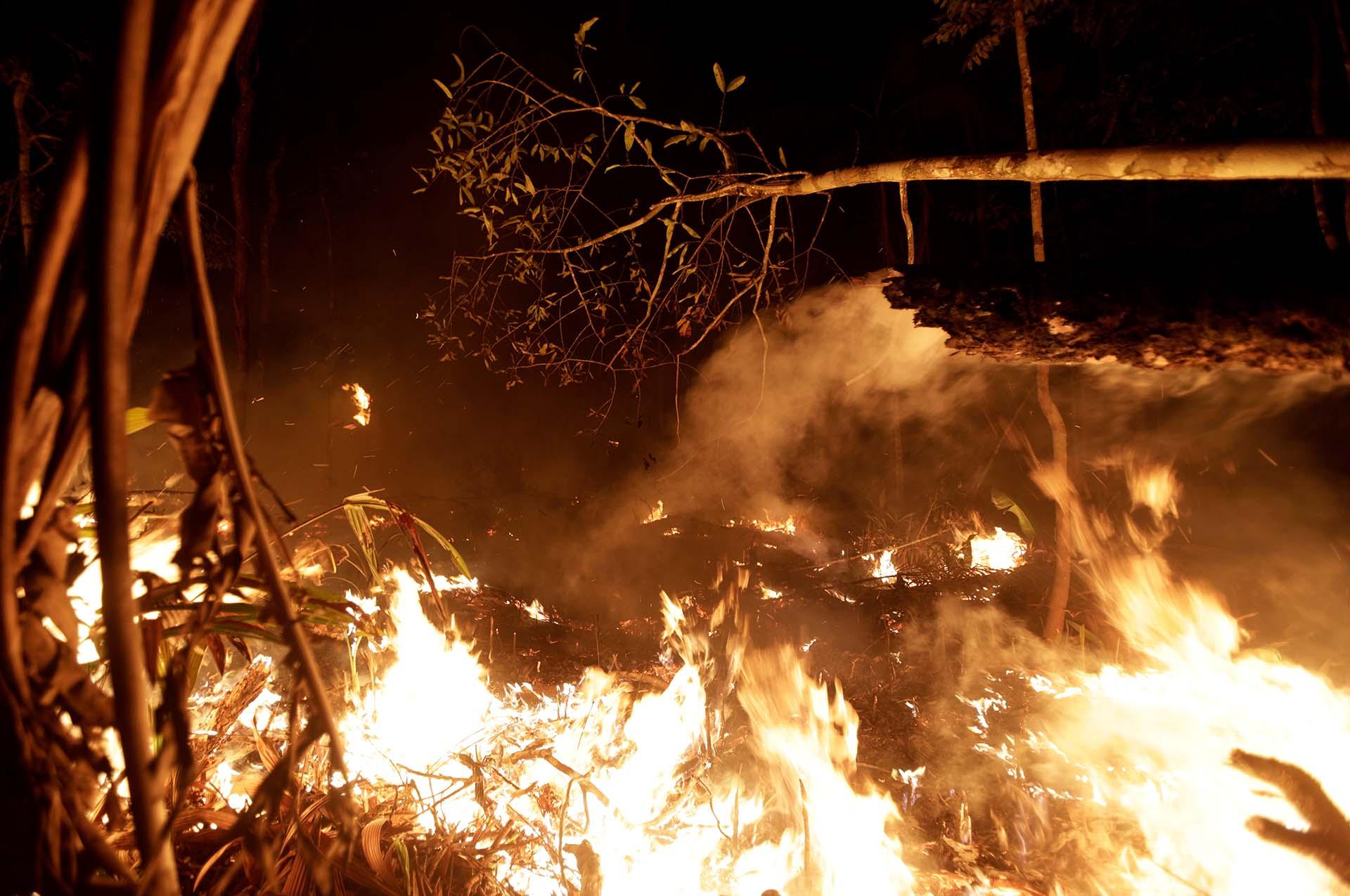 Brasil recibió la colaboración de otros países para contener las llamas en el Amazonas